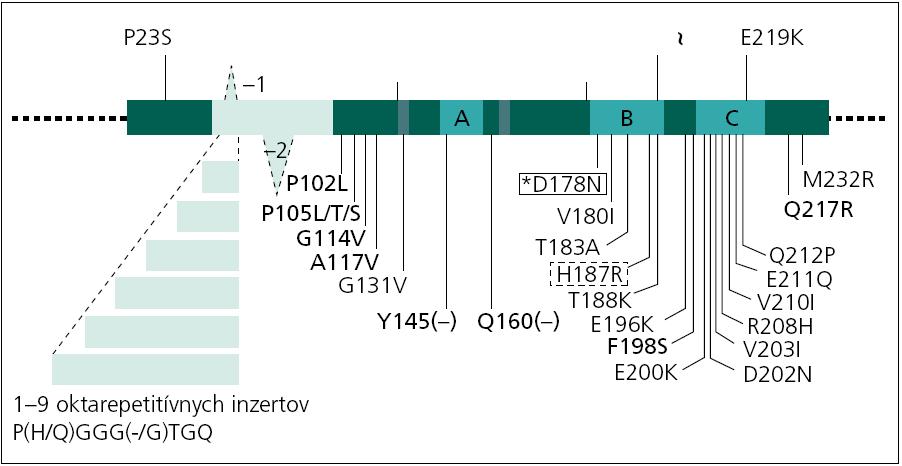 Schéma génu pre priónový proteín (PRNP) a mutácie. Schematická reprezentácia génu PRNP s najvýznamnejšími polymorfizmami a mutáciami. Všetky mutácie sú asociované s CJch okrem tých, ktoré sú znázornené boldom (GSS – Gerstmannov-Sträusslerov-Scheinkerov syndróm), plným rámčekom (FFI – fatálna familiárna insomnia alebo CJch, v závislosti od genotypu v kodóne 129) a bodkovaným rámčekom (fenotyp CJch s variabilnou patológiou). Upravené podľa [16].