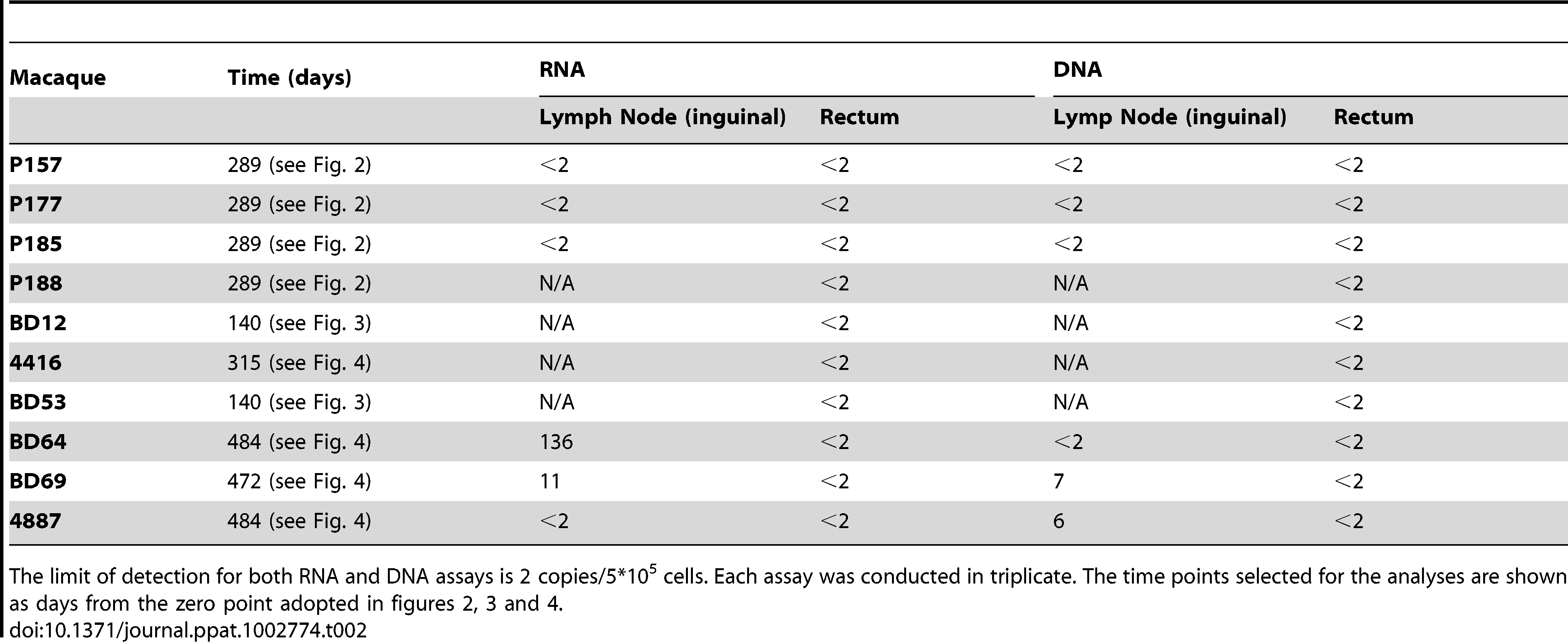 Cell associated RNA and DNA in lymph nodes and rectum.