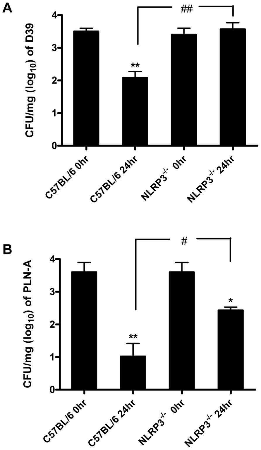 The NLRP3 inflammasome is required for protection against <i>S. pneumoniae</i> infection.