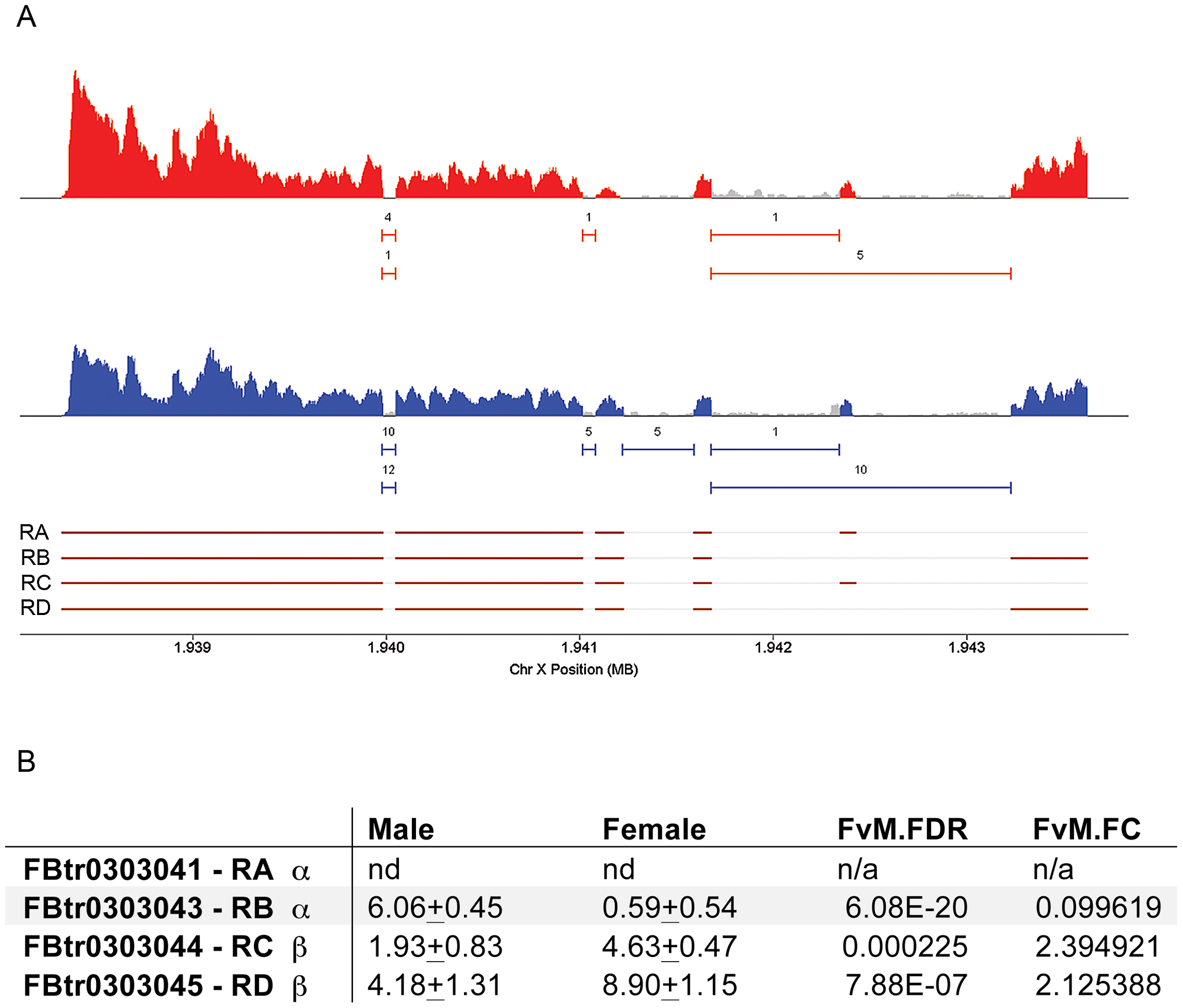 <i>moody</i> transcript isoforms are expressed differently in males and females.