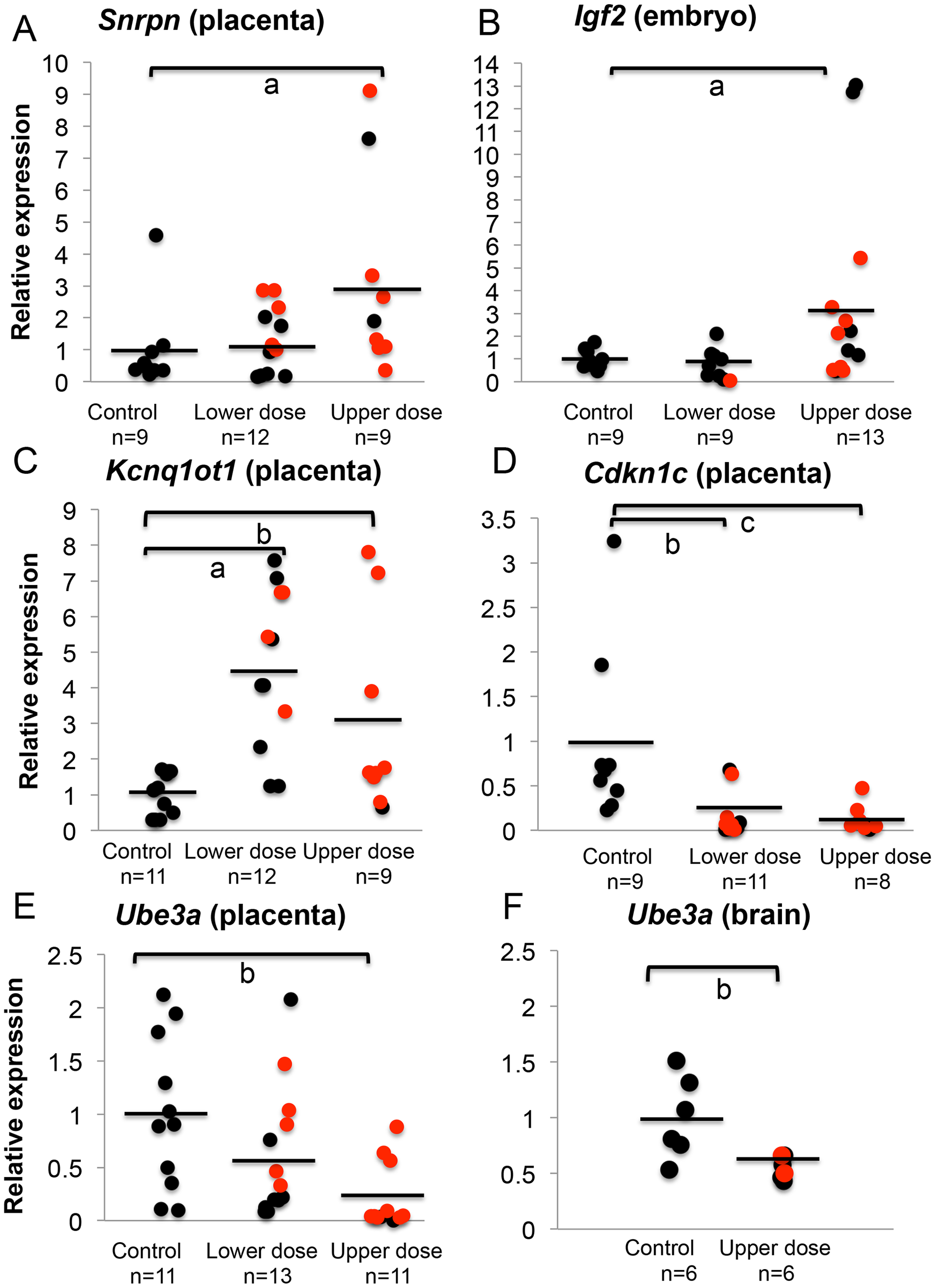 BPA exposure altered total mRNA expression of imprinted genes relative to reference genes.