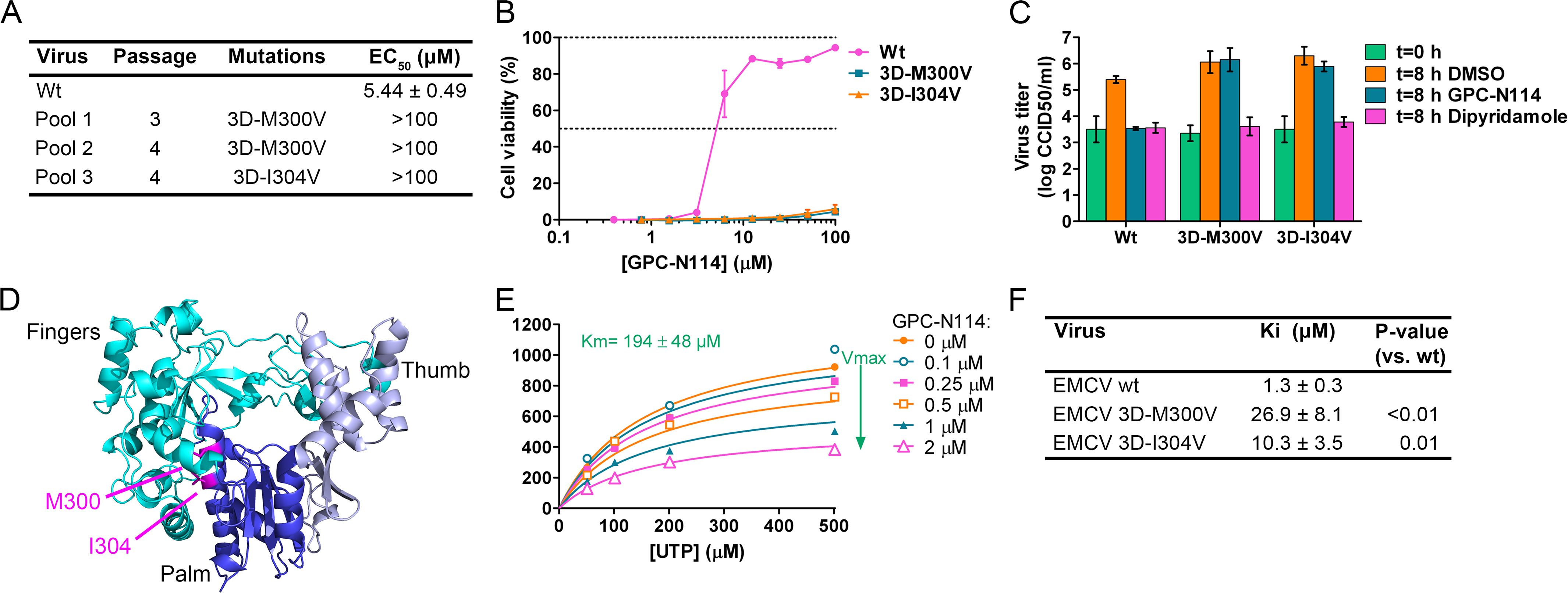 Mutations in EMCV 3D<sup>pol</sup> confer resistance to GPC-N114.