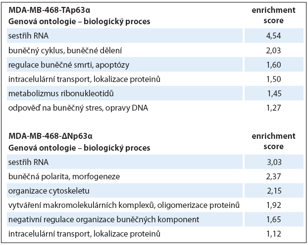 Výsledky analýzy genové ontologie.