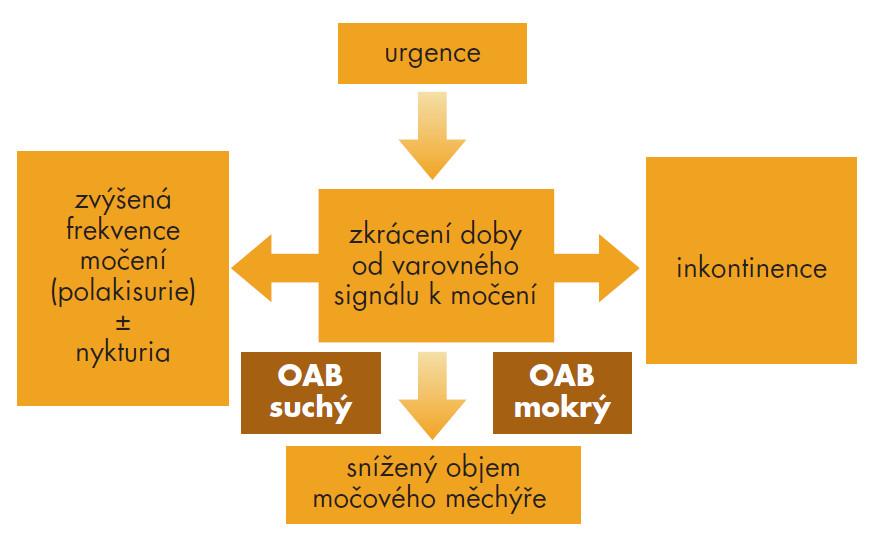 Schéma 1. Hyperaktivní měchýř a jeho typy (volně dle Ch. Chappela [21]).