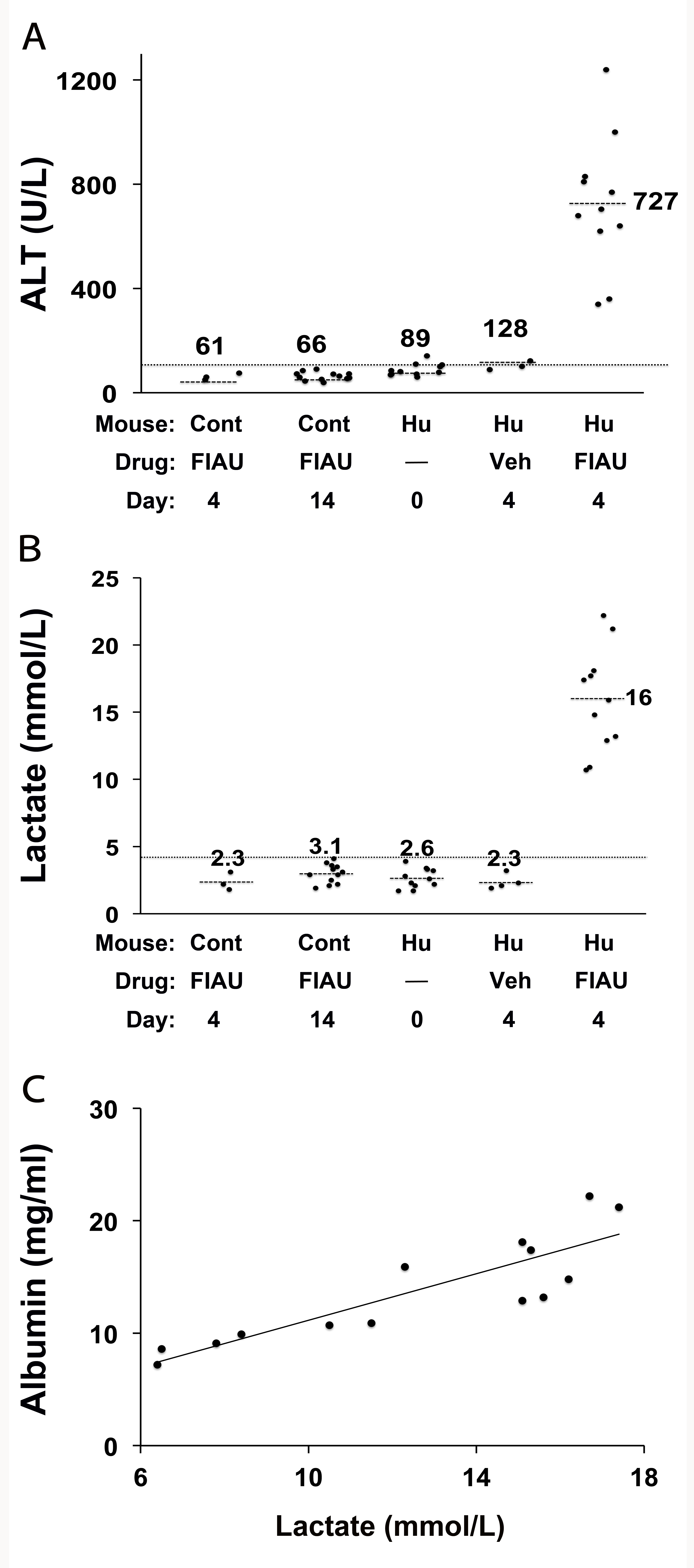 FIAU-induced liver toxicity develops in TK-NOG mice with humanized livers.