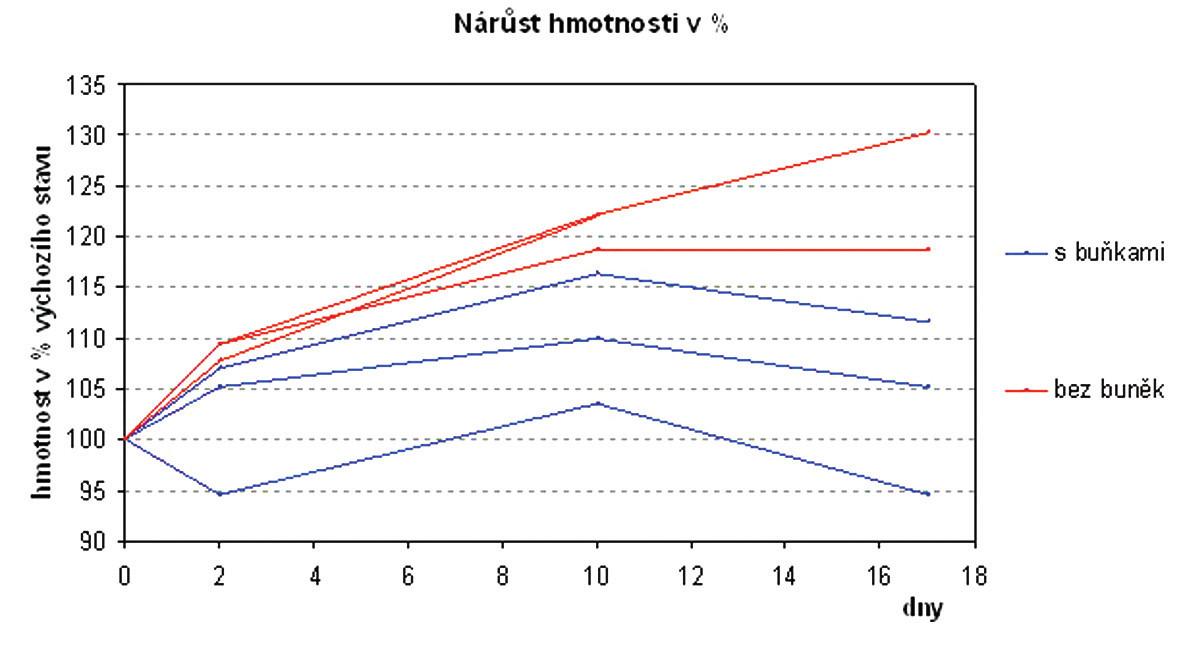 Nárůst hmotnosti v % Graph 1. Weight gain in % Ve skupině potkanů, u kterých byly buňky aplikovány, došlo krátkodobě ke zpomalení růstu nádoru ve srovnání s neléčenou skupinou.