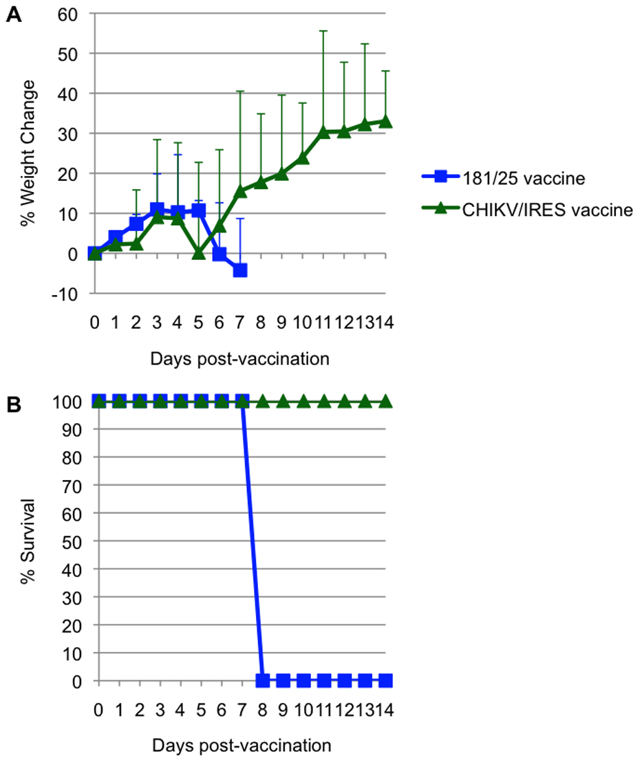 Virulence for 3-week-old A129 mice for strains 181/25 and CHIKV/IRES.