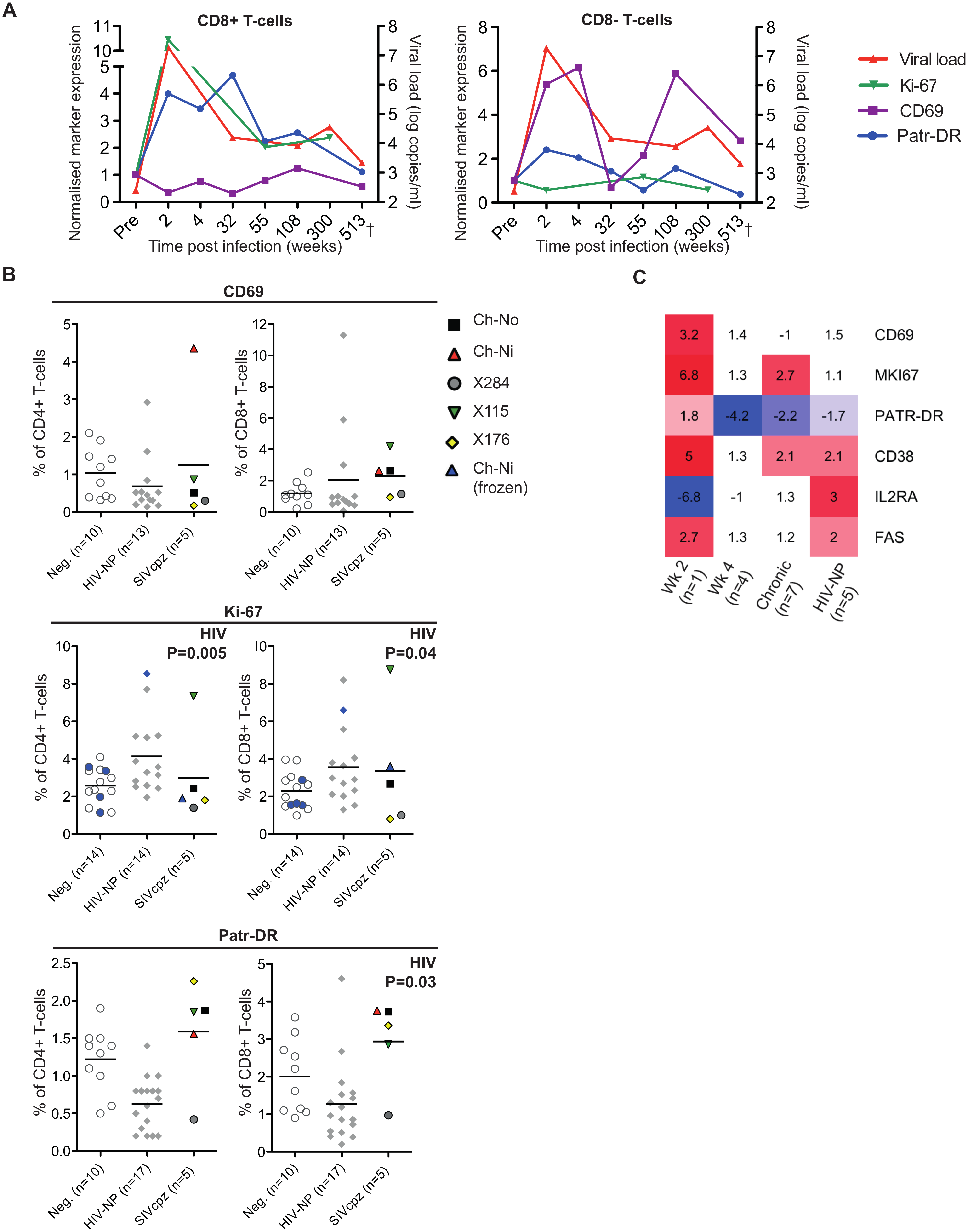 Peripheral blood T-cell activation in SIVcpz infected animals.