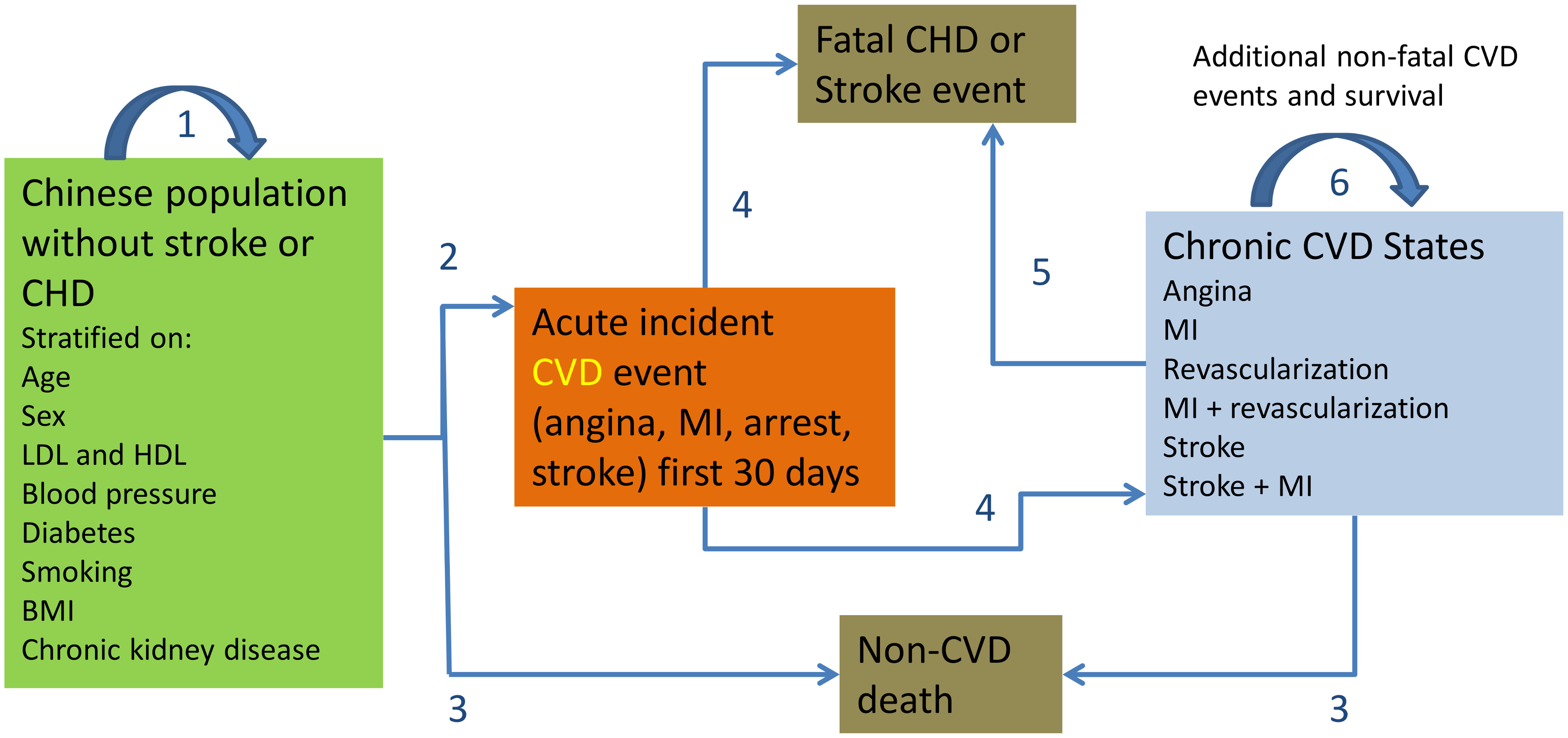 CVD Policy Model-China structure.