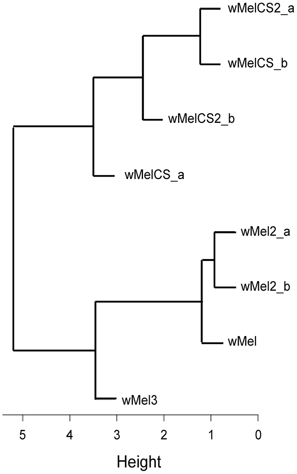 Phenotype-based cluster analysis of wMel variants.