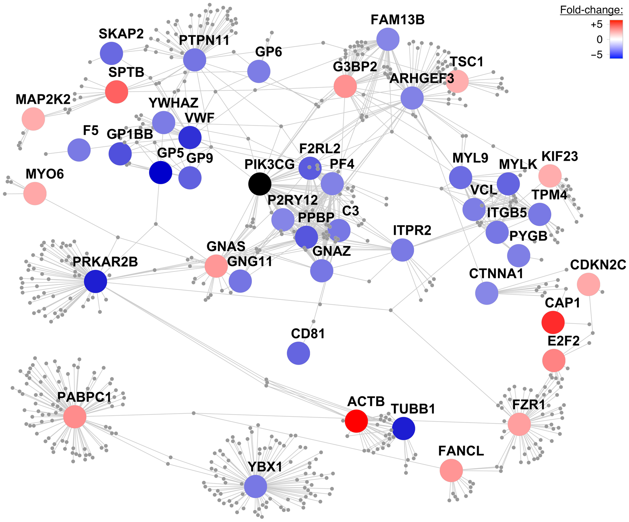 Protein–protein interaction network centered on PIK3CG.