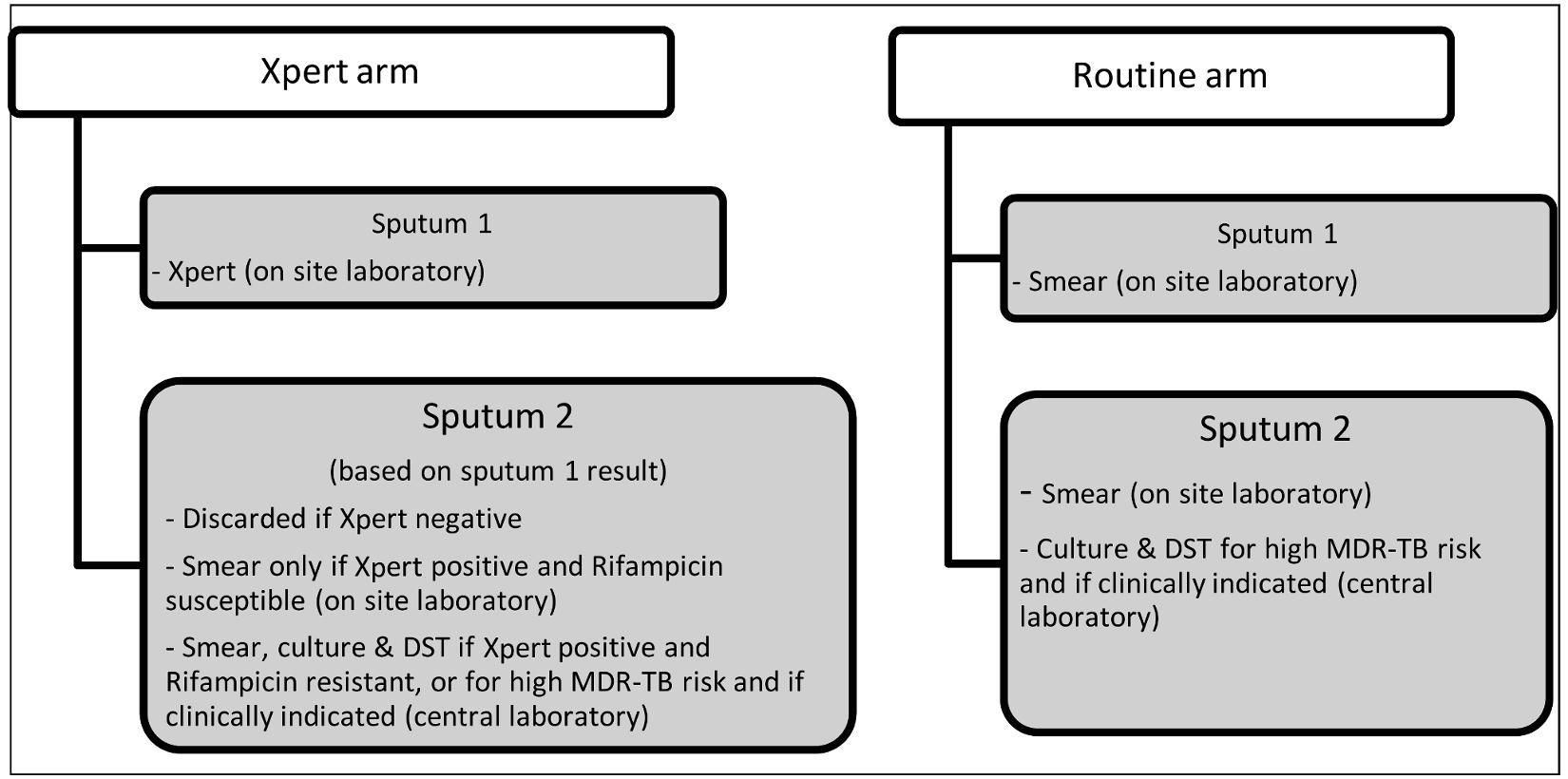 Diagnostic testing algorithm for each study arm.