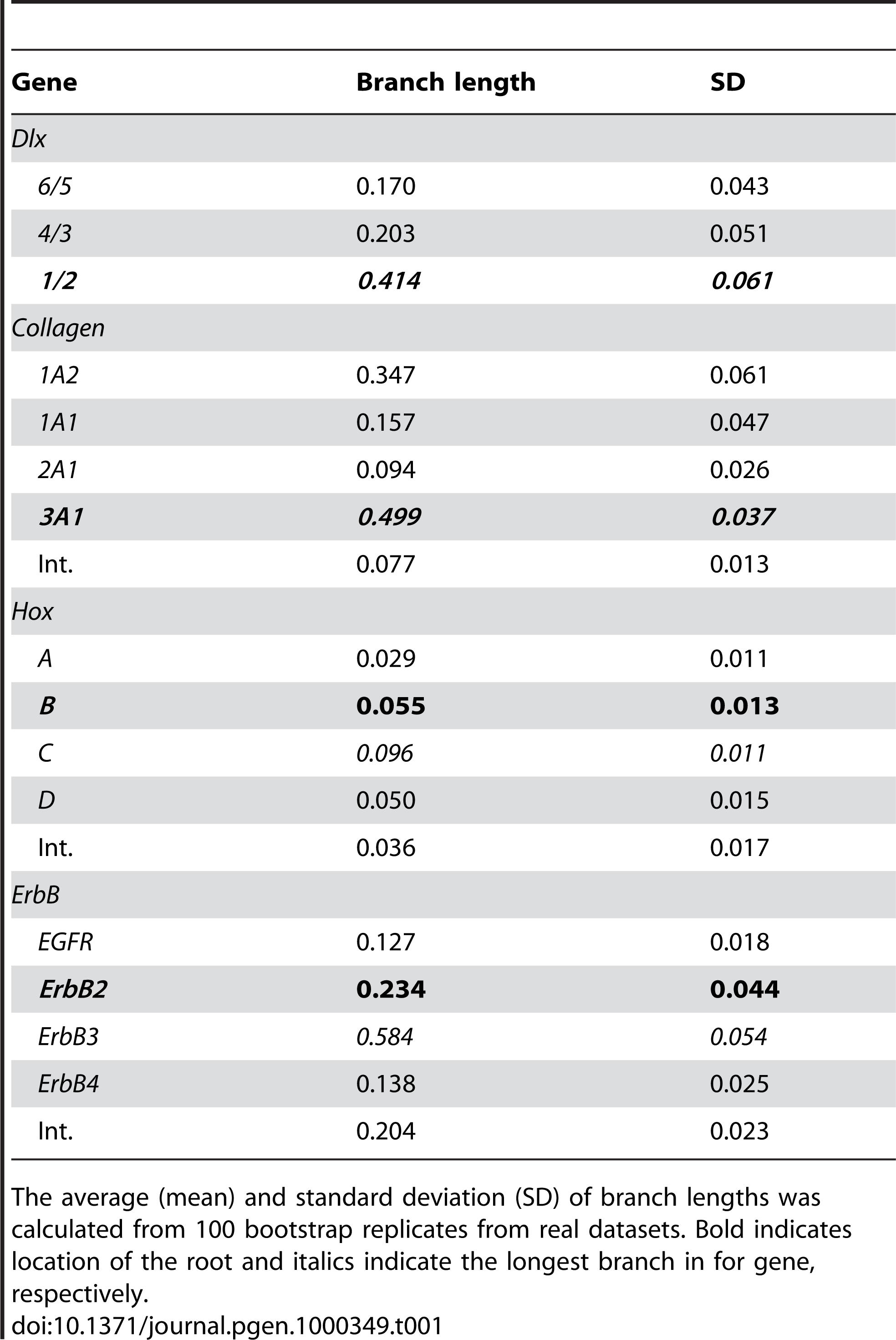 Branch length data for the stem of <i>Dlx</i>, <i>Col</i>, <i>Hox</i> and <i>ErbB</i> clusters.