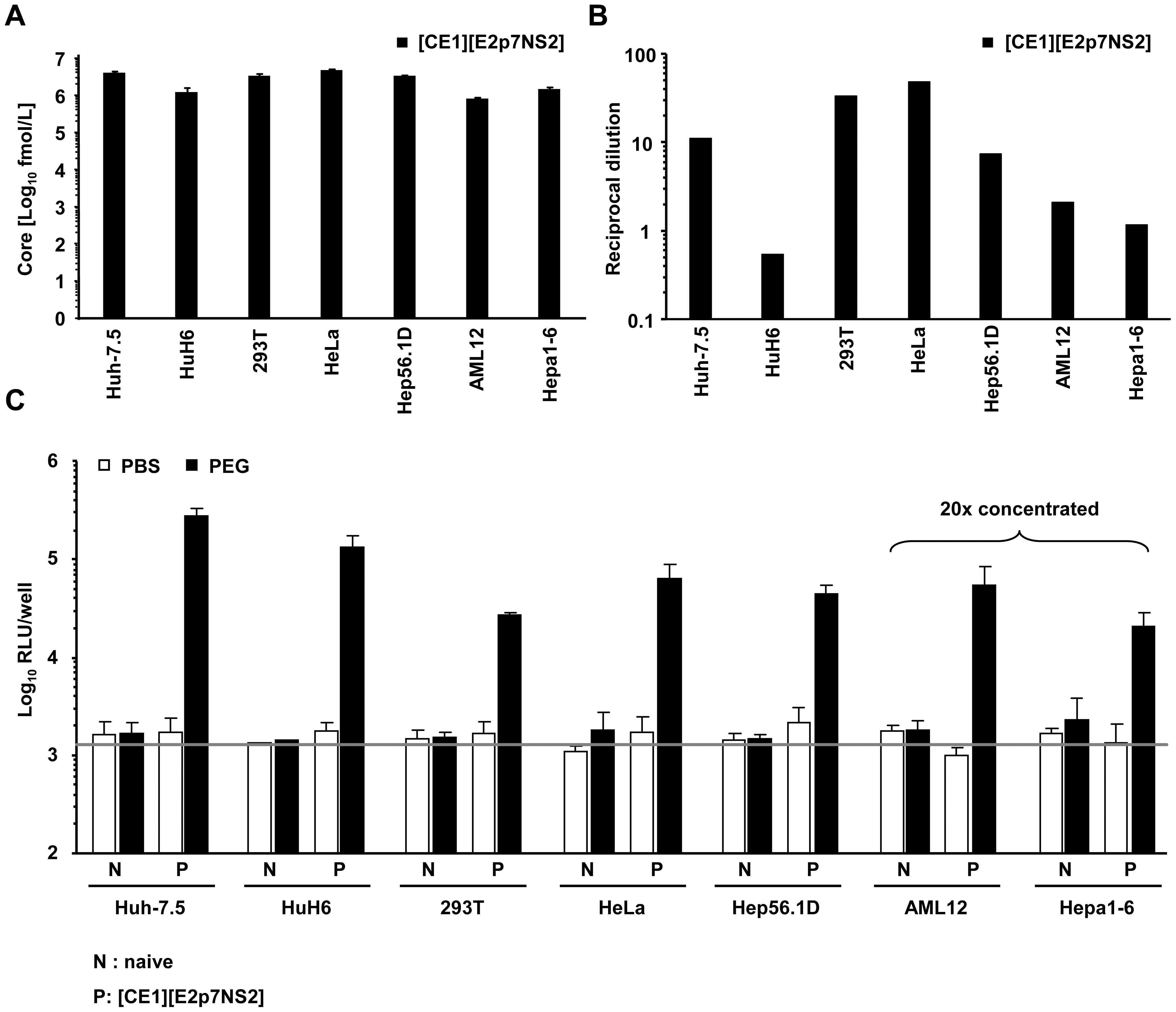 Production of infectious HCV from heterokaryons between human liver cells and human non-hepatic or mouse liver cells.