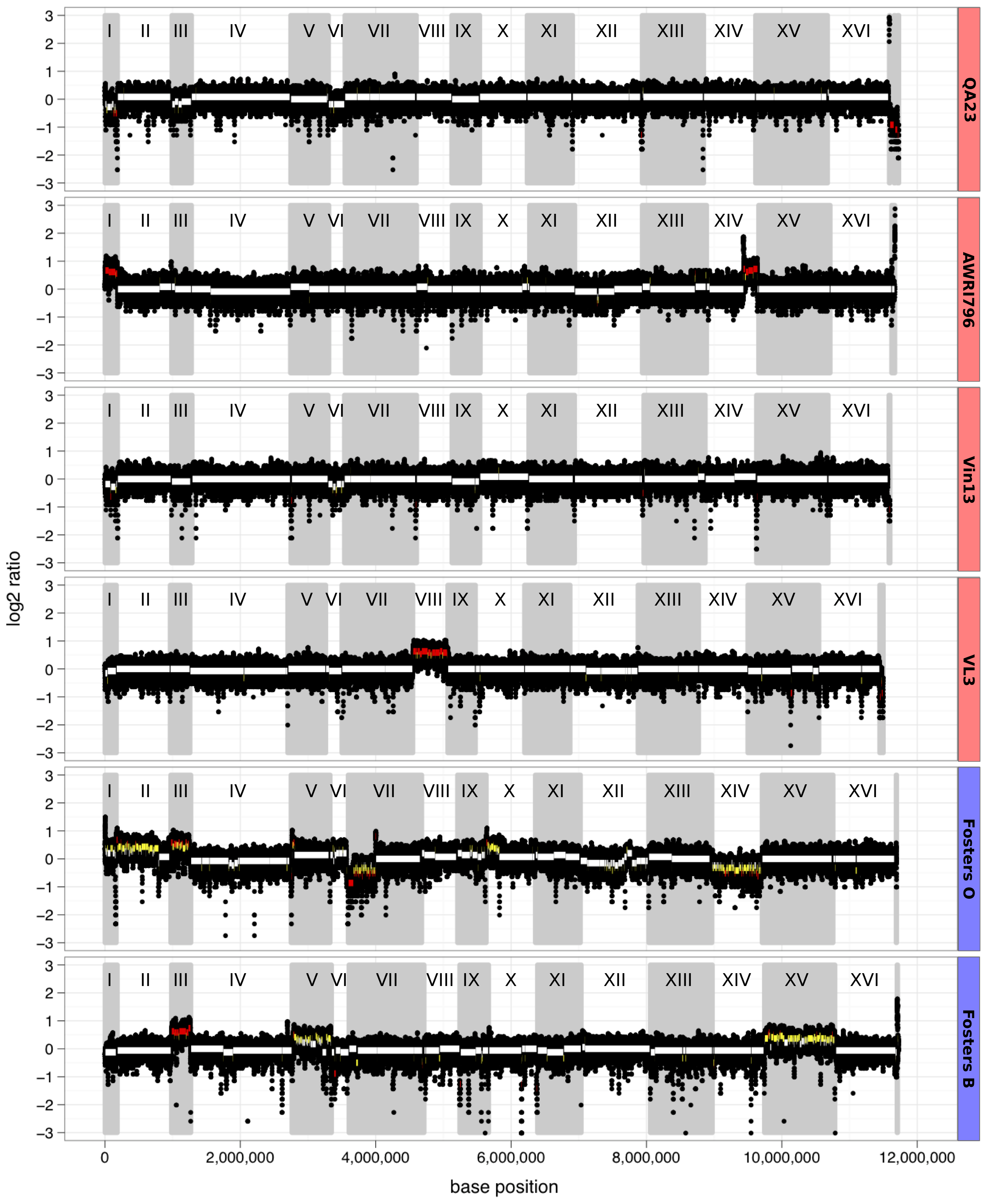 Chromosomal aneuploidy determined by whole-genome sequencing coverage.