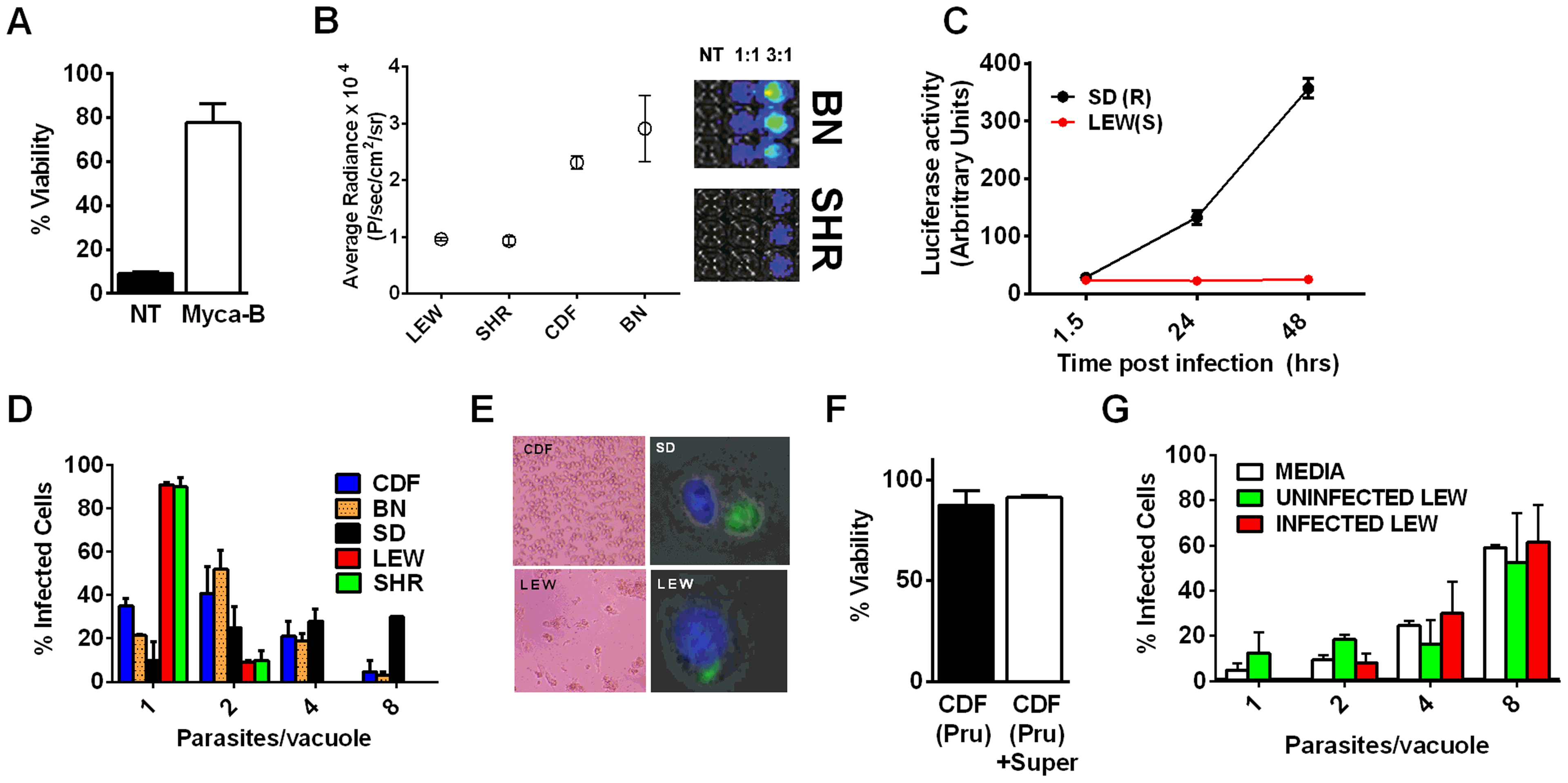 NLRP1-variant dependent macrophage death depends on parasite invasion and controls parasite proliferation.