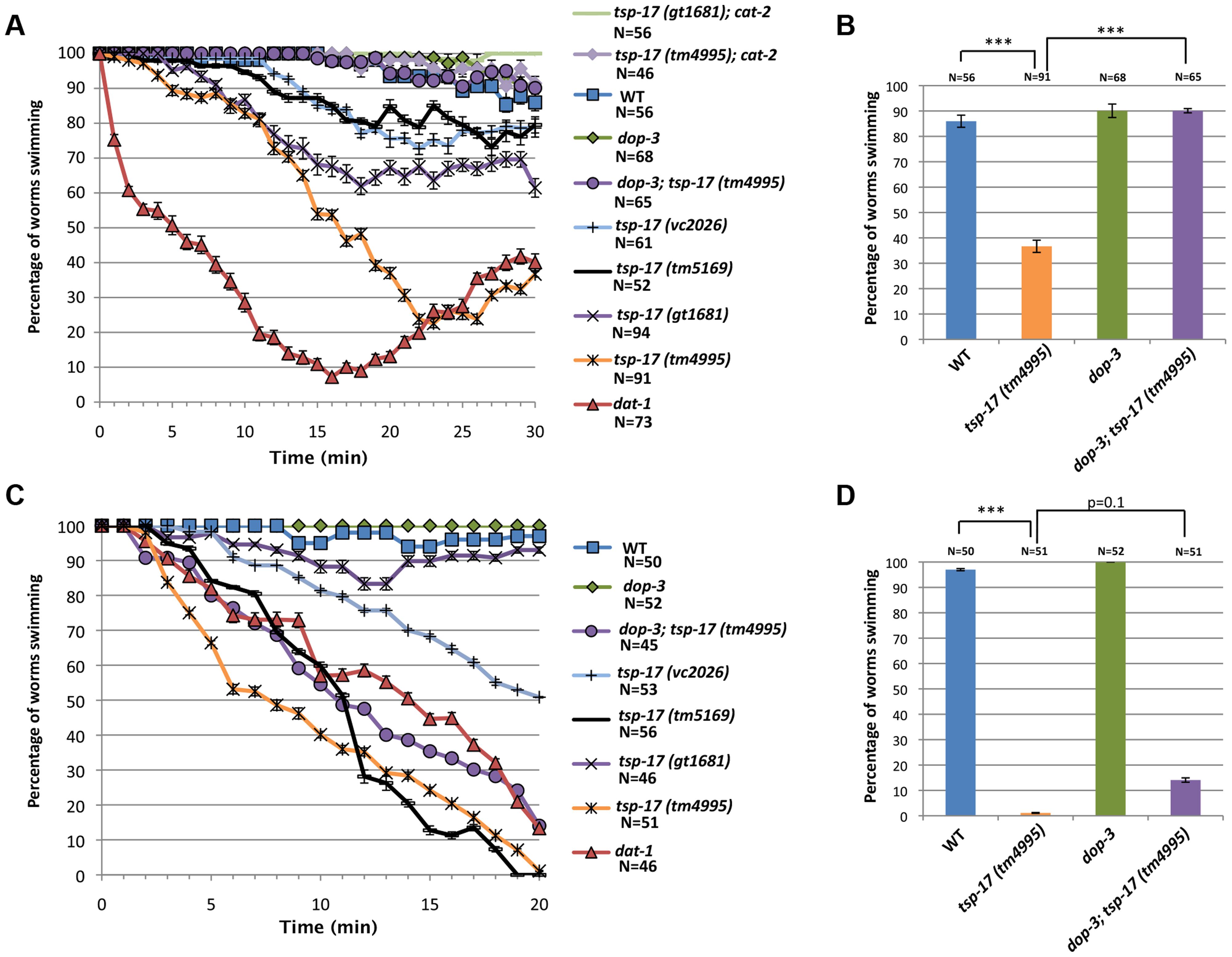 Behavioral phenotypes associated with <i>tsp-17</i> mutants.