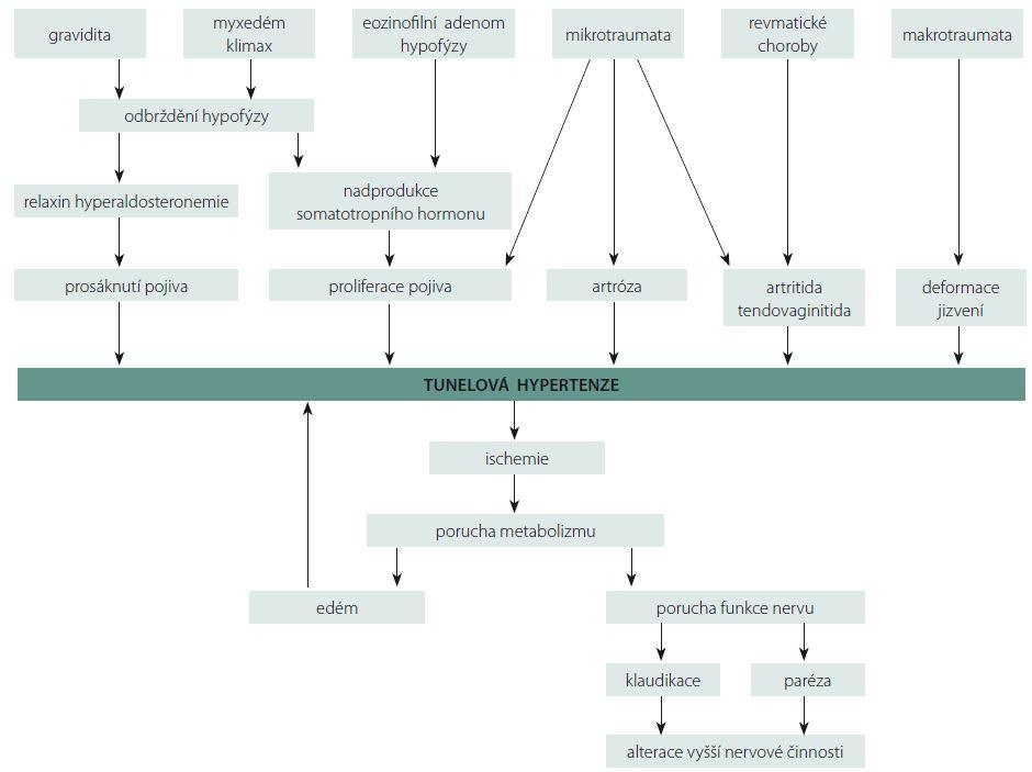 Schéma 1. etiologických faktorů hypertenze v karpálním tunelu [16]. Scheme 1. A diagram of etiological factors of carpal tunnel hypertension [16].
