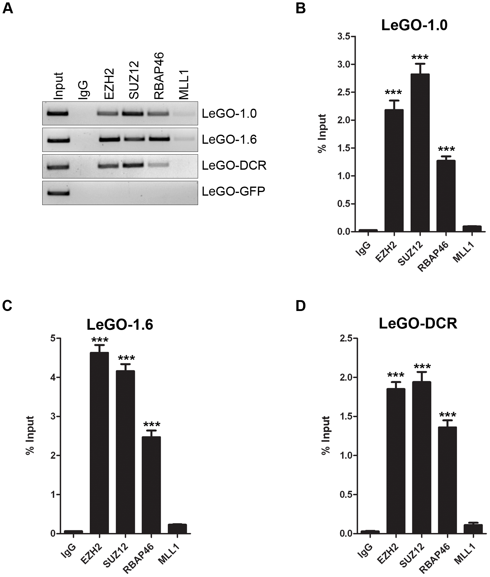 Overexpressed <i>mPINC</i> transcripts interact with PRC2 in HC11 cells.