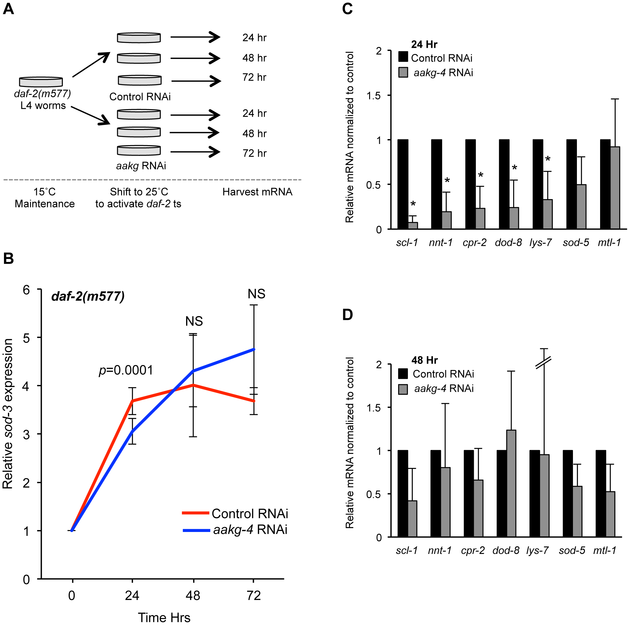 <i>aakg-4</i> RNAi alters dynamics of DAF-16 target gene expression.