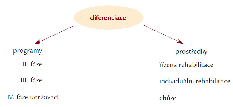 Diferenciace programů a prostředků fyzického zatěžování v rehabilitaci.