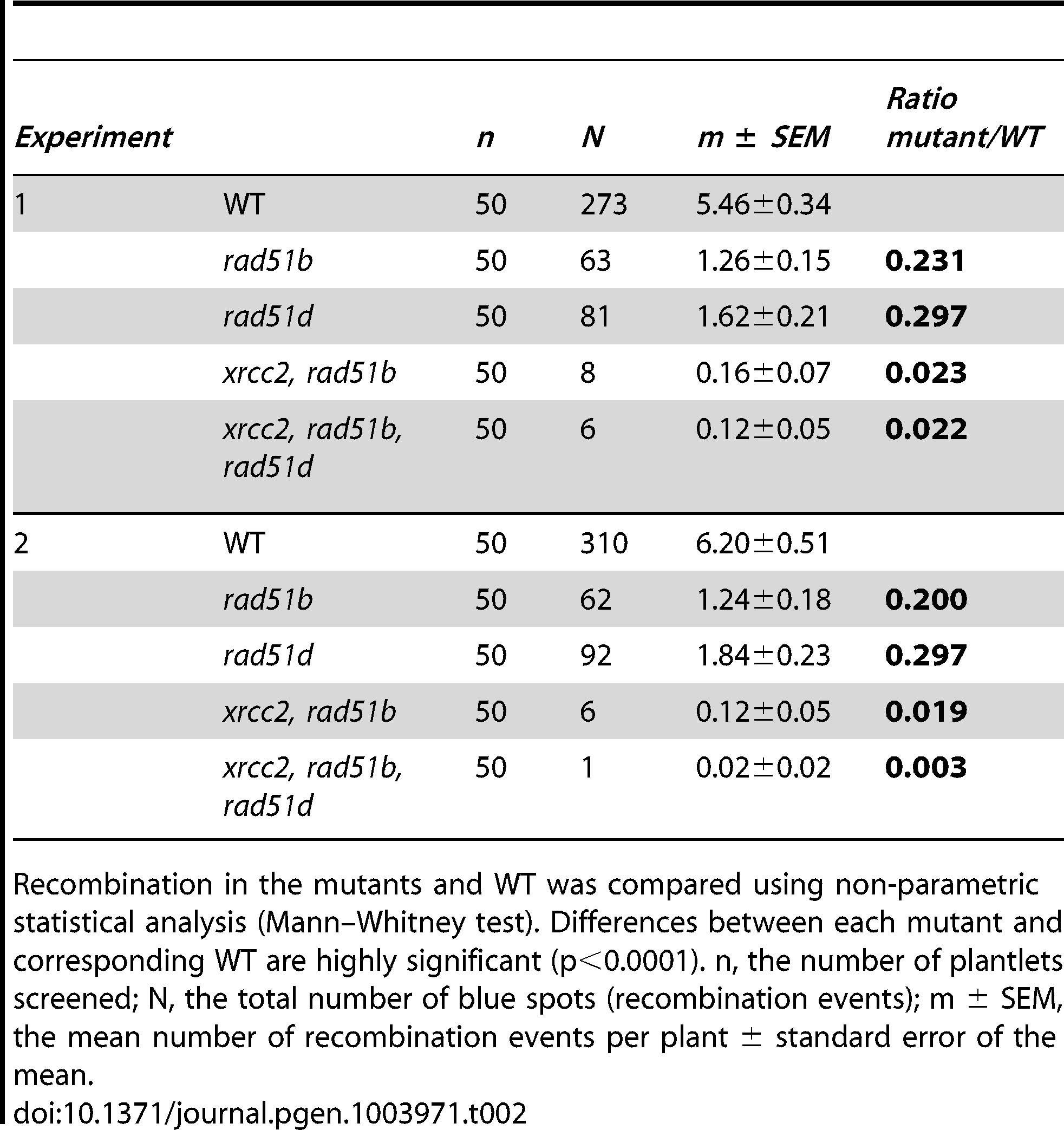 Spontaneous DGU.US recombination in wild-type, <i>rad51b</i>, <i>rad51d</i>, double and triple mutants.