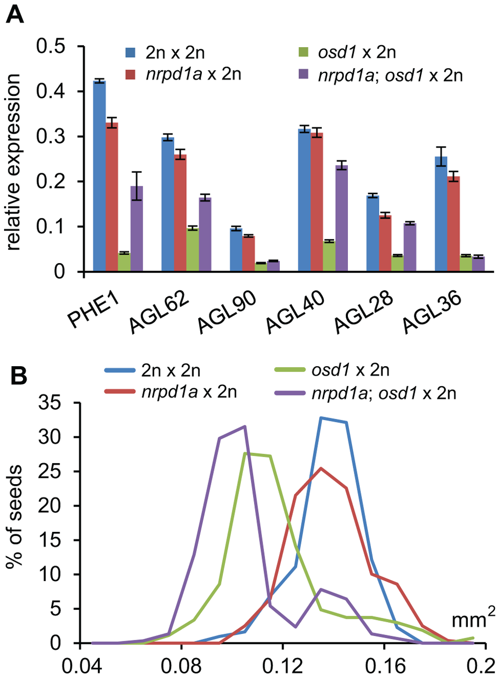Maternal Loss of NRPD1a Does Not Restore Wild-Type Levels of <i>AGL</i> Expression and Wild-Type Seed Size.
