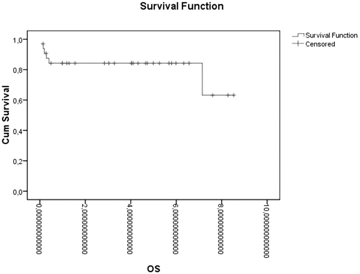 Celkové přežívání u pacientů s Hodgkinovým lymfomem po autologní transplantaci periferních kmenových buněk v letech. OS – celkové přežívání