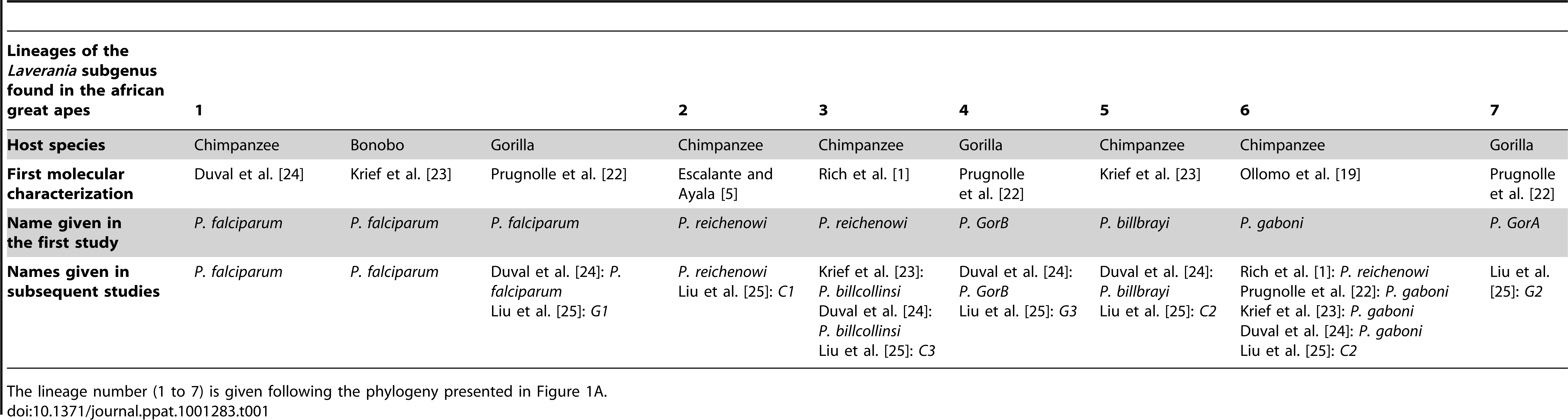 Historic overview of the molecular descriptions and of the names given to the different lineages (seven lineages) of the <i>Laverania</i> subgenus.