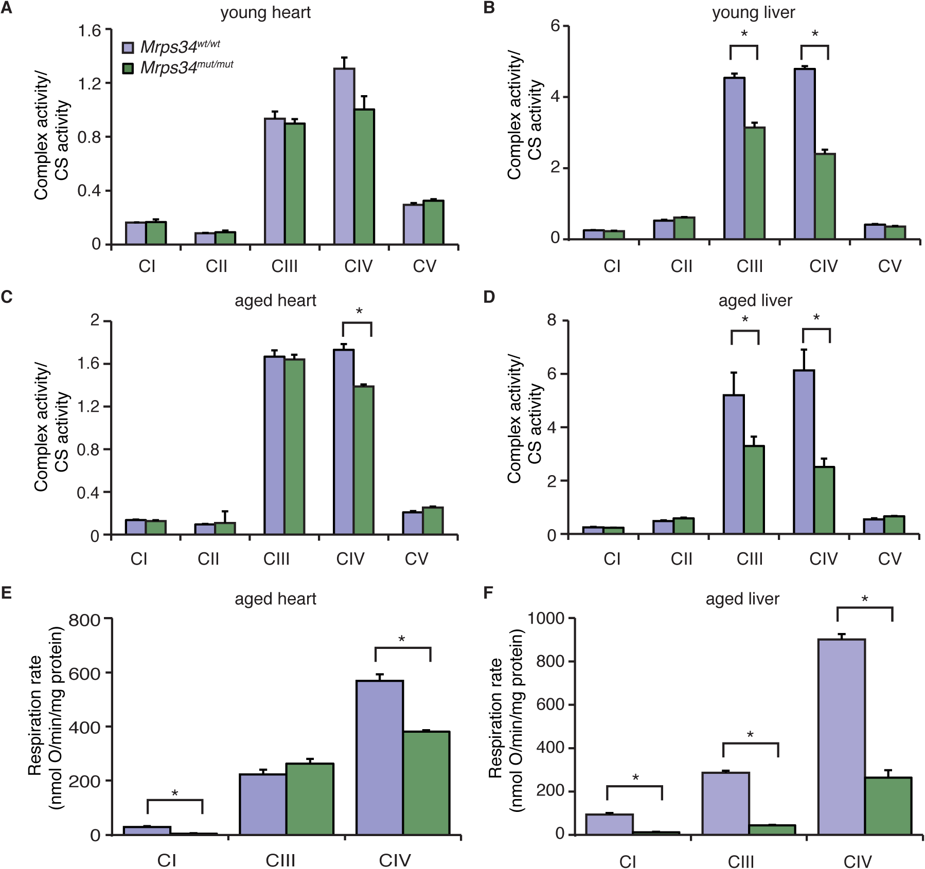The <i>Mrps34</i> mutation causes reduced oxygen consumption and respiratory complex activities in heart and liver mitochondria.