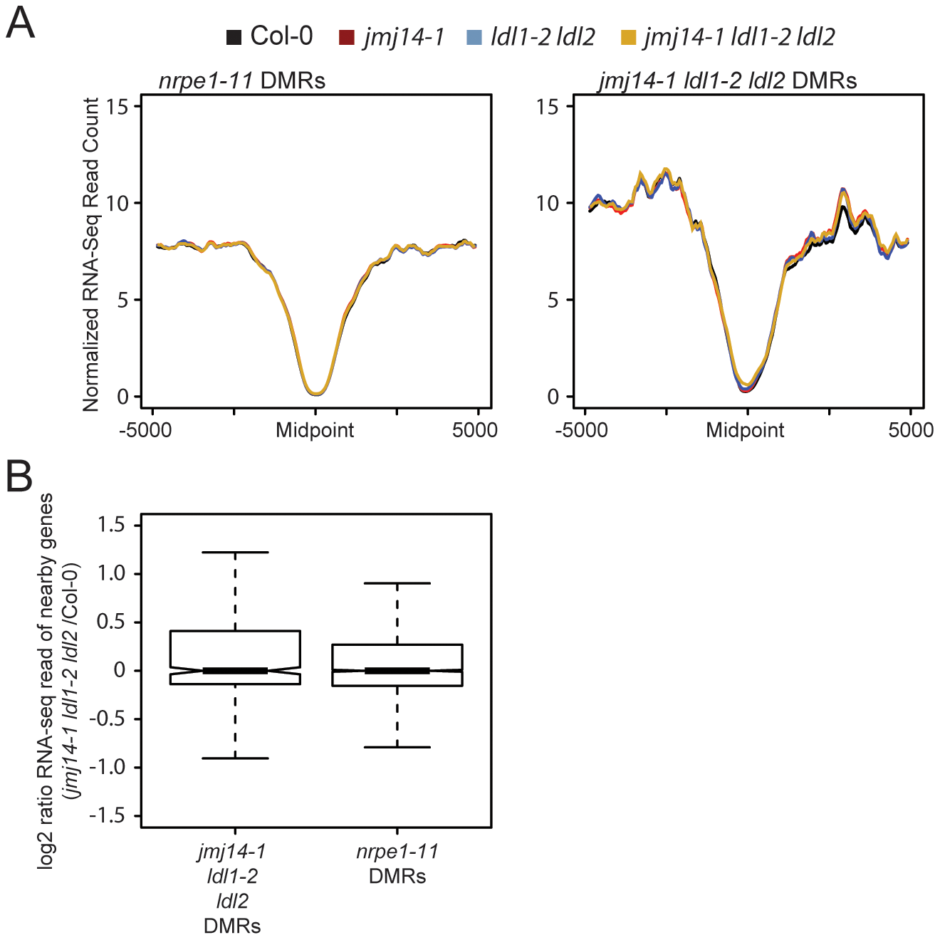 Changes in histone methylation at DMRs do not correlate with alterations in mRNA expression.