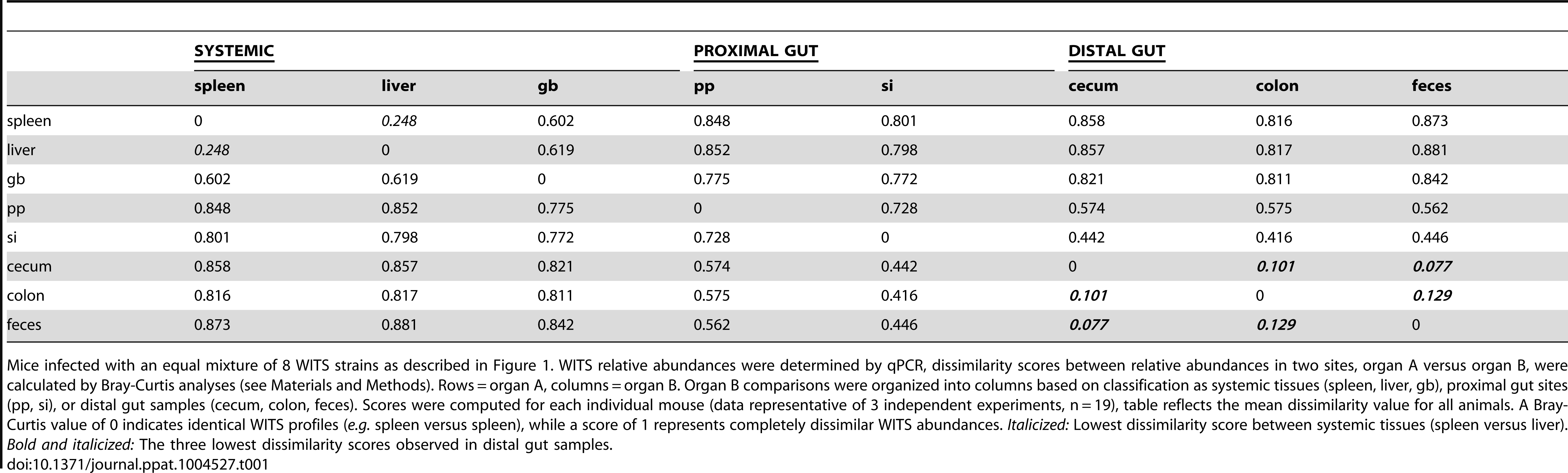 Bray-Curtis dissimilarity values of WITS relative abundances within murine tissues during persistent infection.