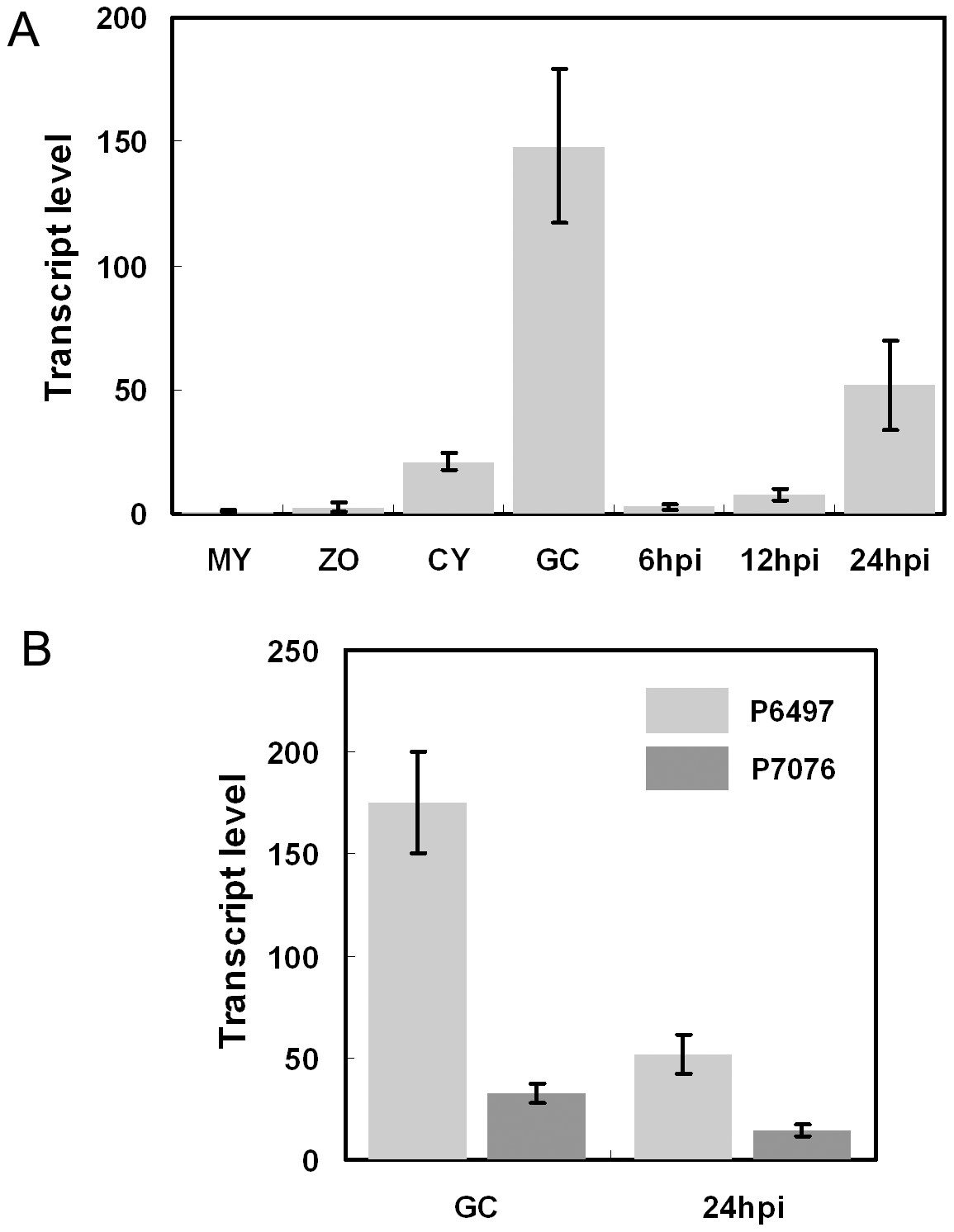 Avr3b is induced during infection and shows transcriptional polymorphisms.
