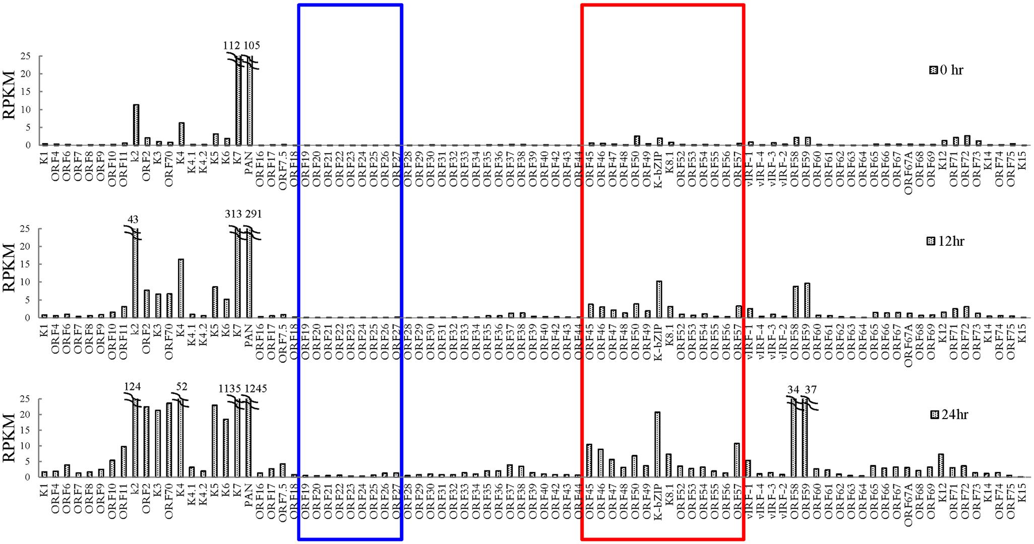 Transcriptome profile of KSHV during viral reactivation.