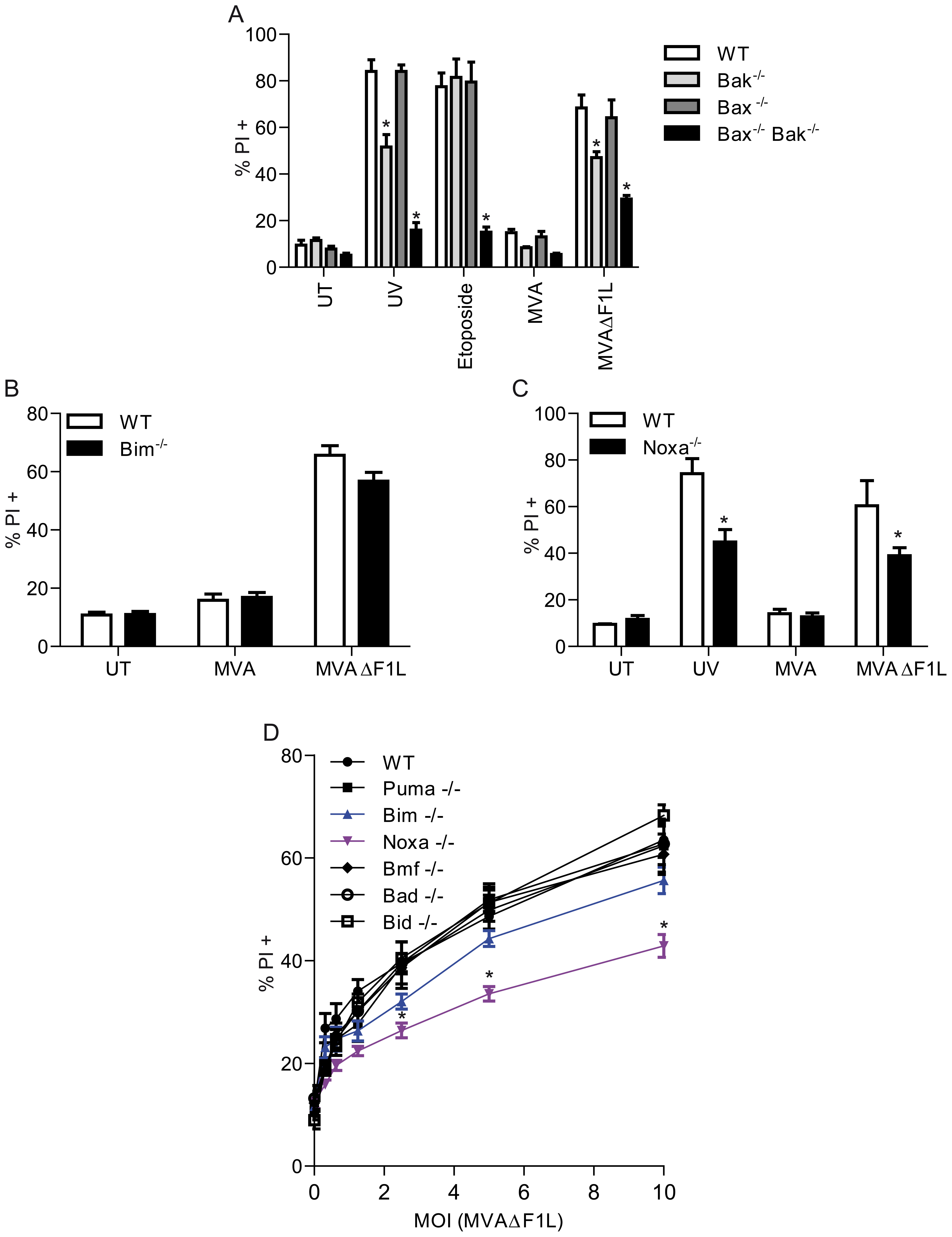 MVAΔF1L mediated apoptosis is predominantly induced by the BH3-only proteinNoxa.