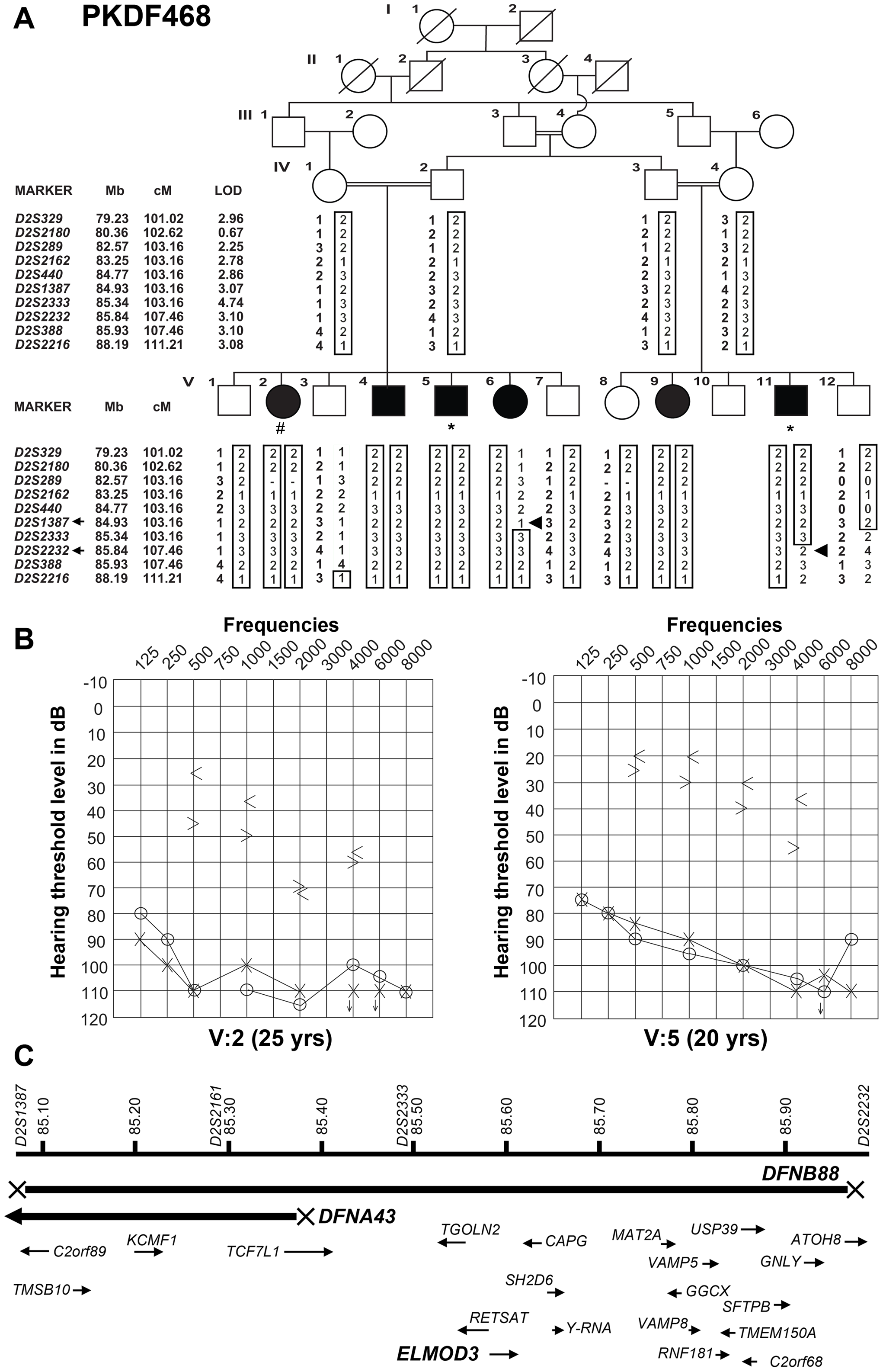 Hearing loss segregating in family PKDF468 is associated with a missense ELMOD3 allele.