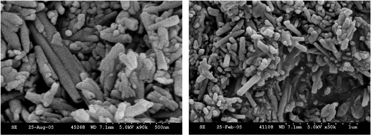 Fig. 1. Scanning electron micrographs of raw halloysite G