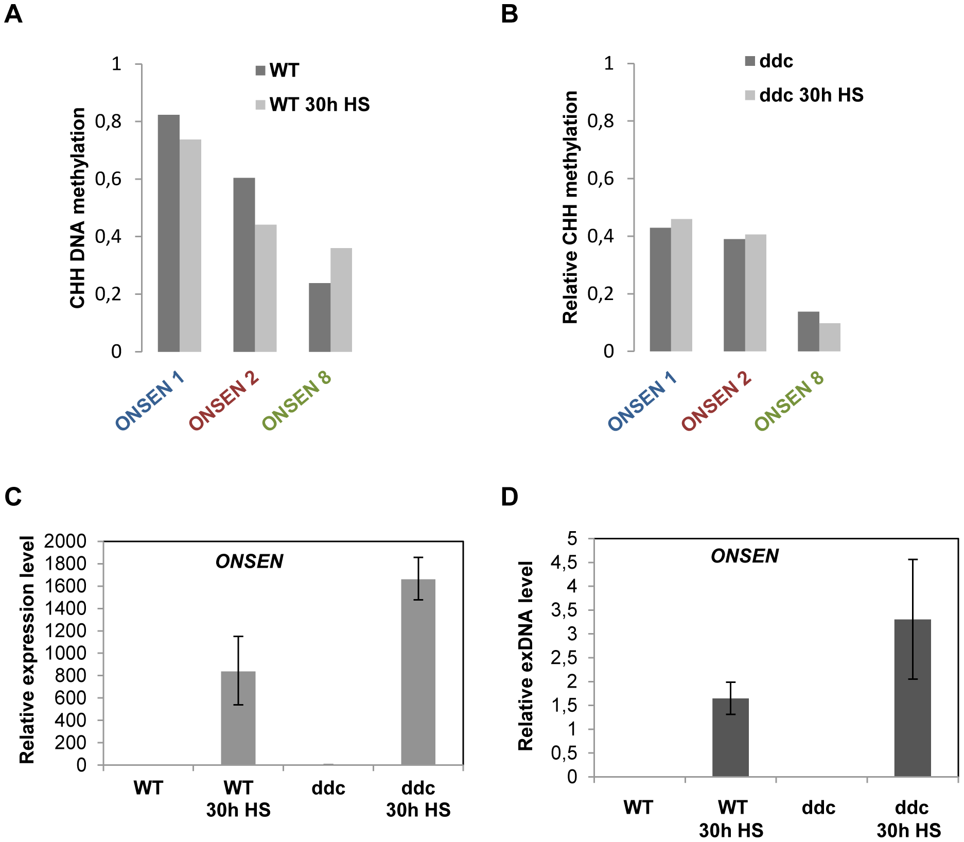 Loss of CHH DNA methylation at the promoter is not sufficient to activate the element but enhances the response to heat stress.