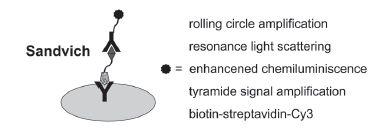 Fig. 2. Antibody microassay format