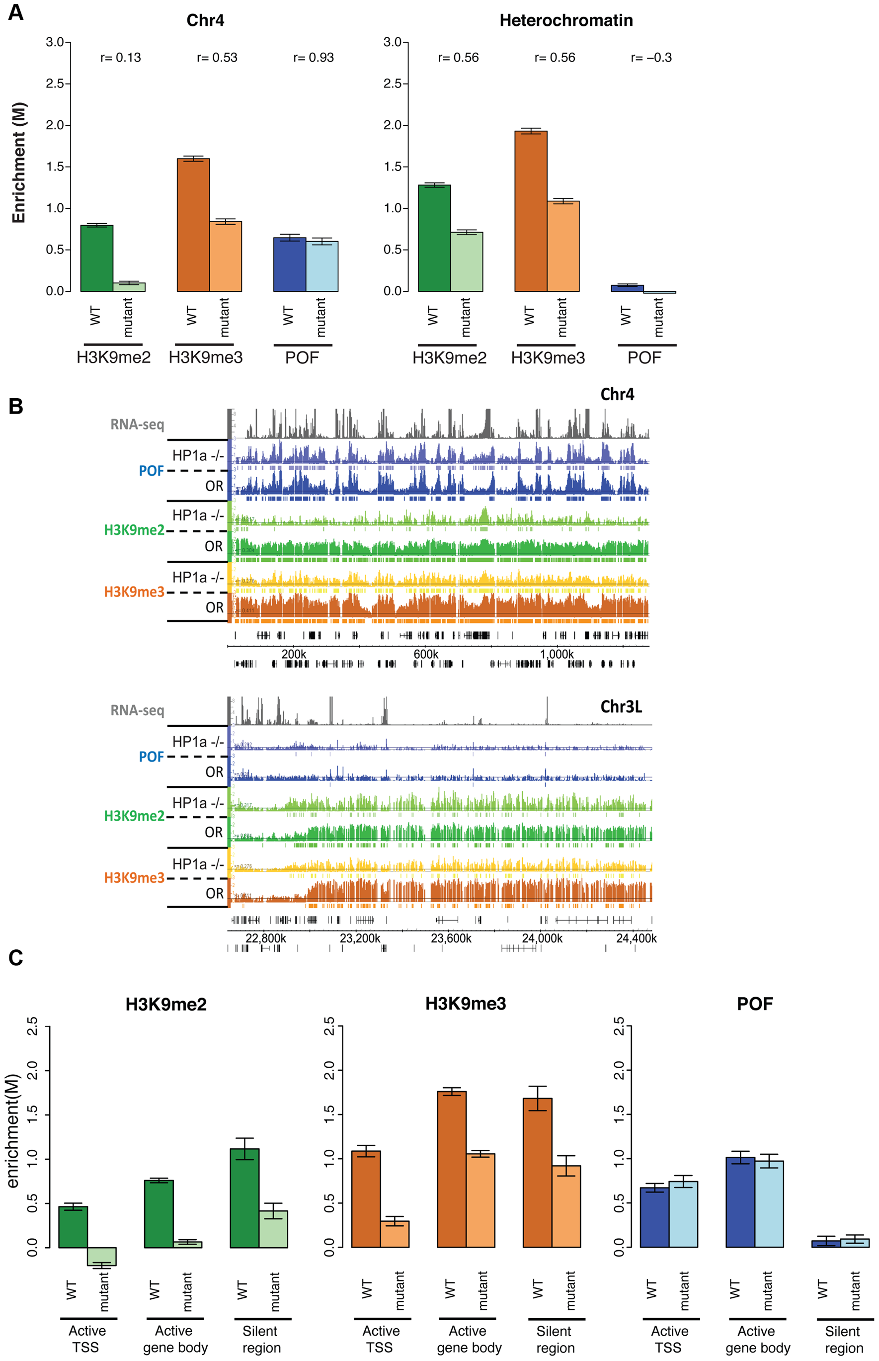 Lack of HP1a does not lead to a loss of POF from chromosome 4.