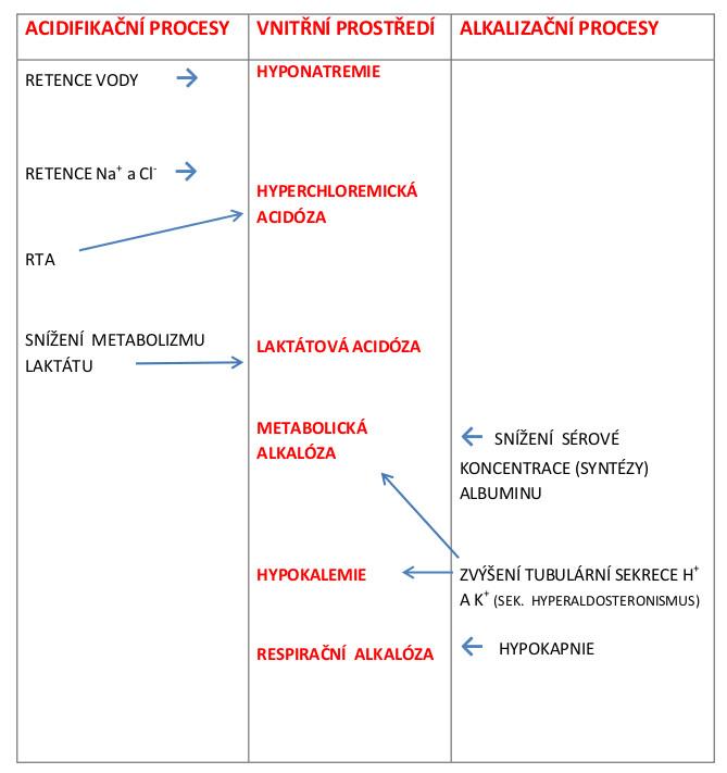 Vliv acidifikačních a alkalizačních procesů na biochemické změny ve vnitřním prostředí u pacientů s ACJ