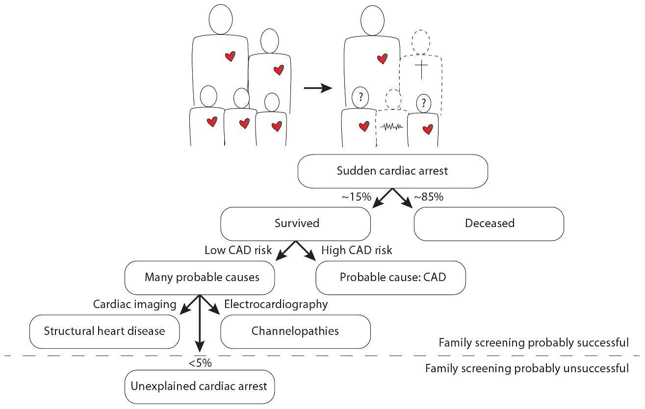 Illustration of the position of unexplained cardiac arrest among sudden cardiac arrest, focused on the occurrence of familial sudden cardiac arrest.