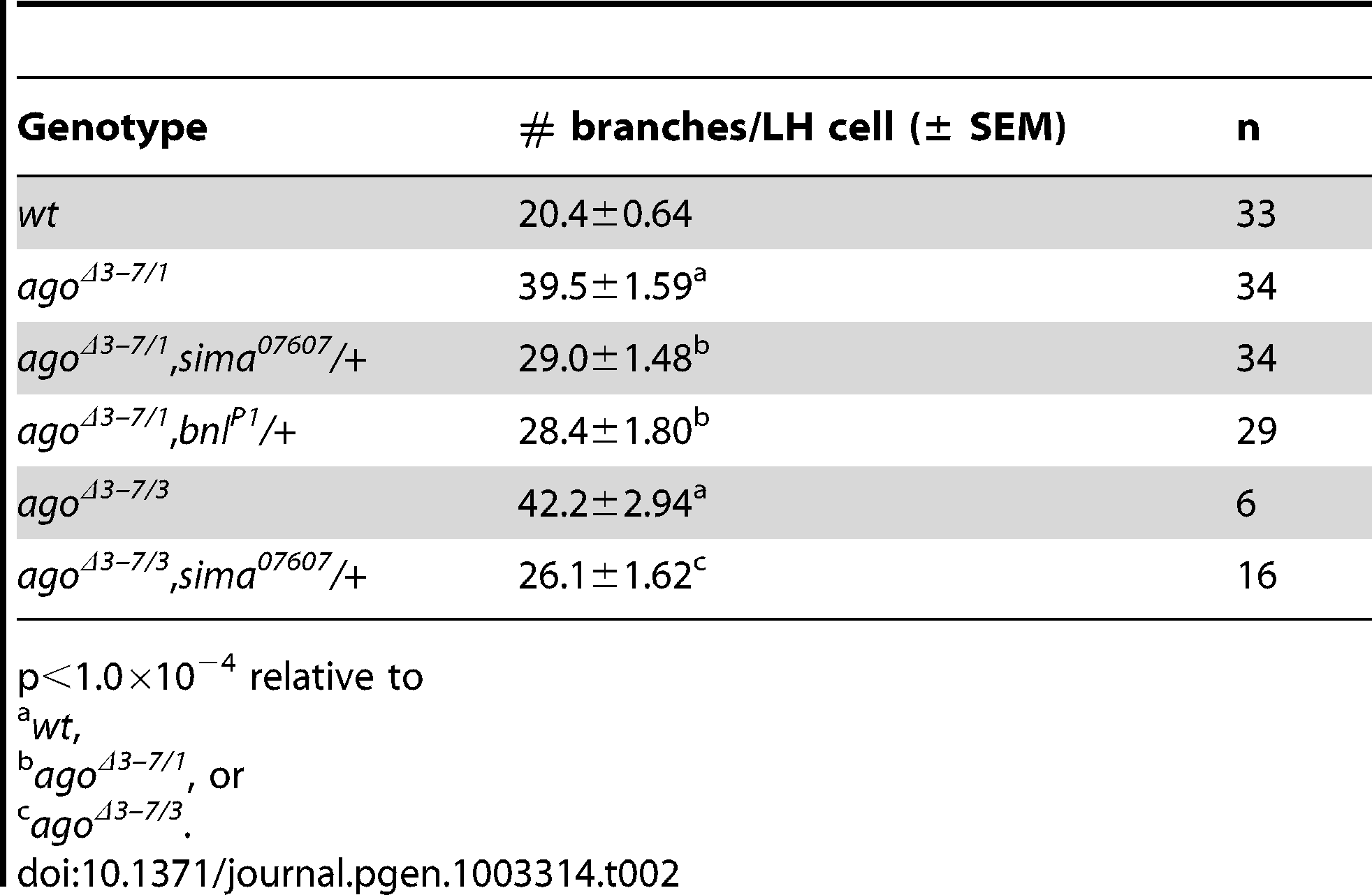 Number of tracheal terminal branches per LH cell.