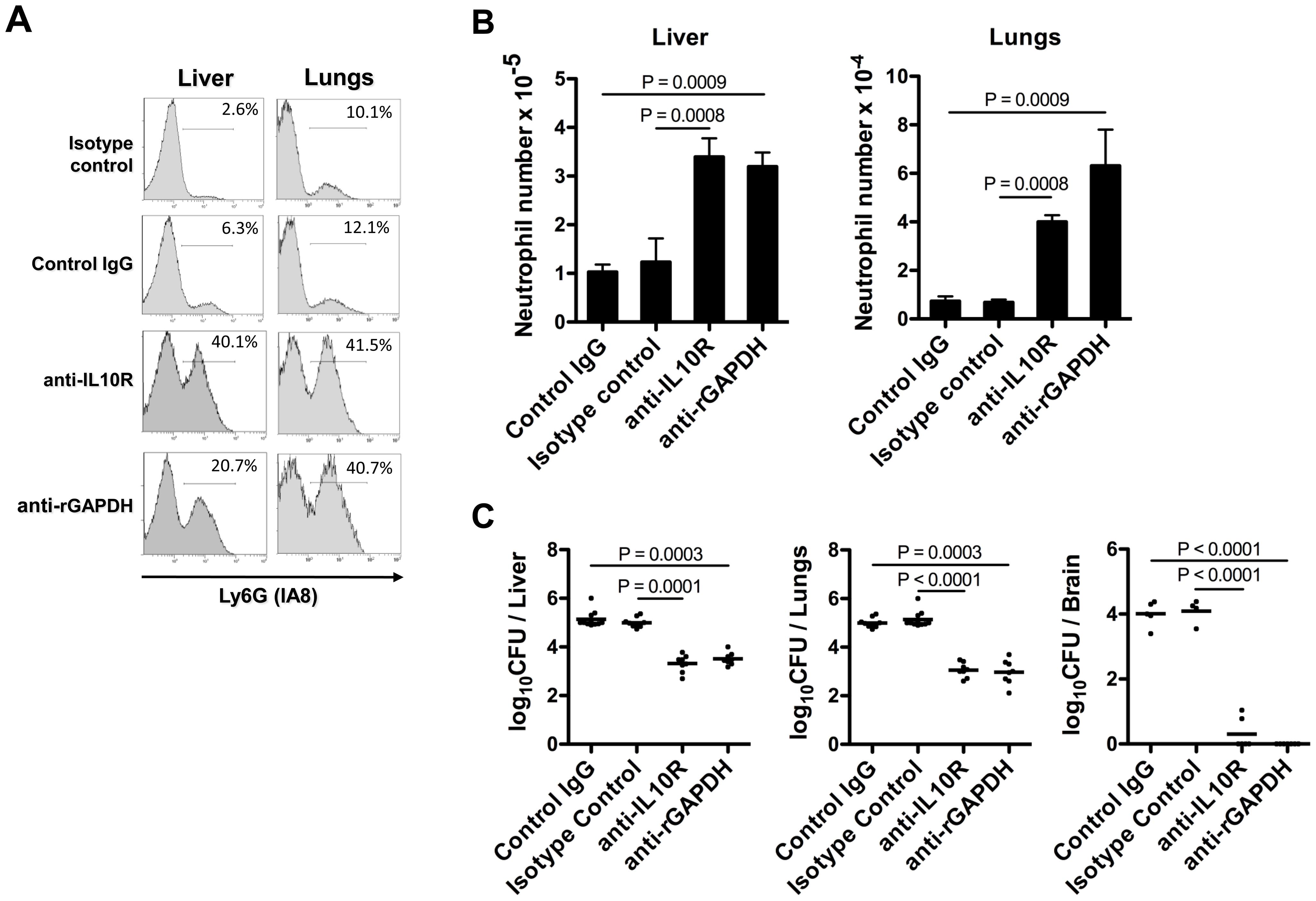 GAPDH-induced IL-10 blocks neutrophil recruitment in injured organs.