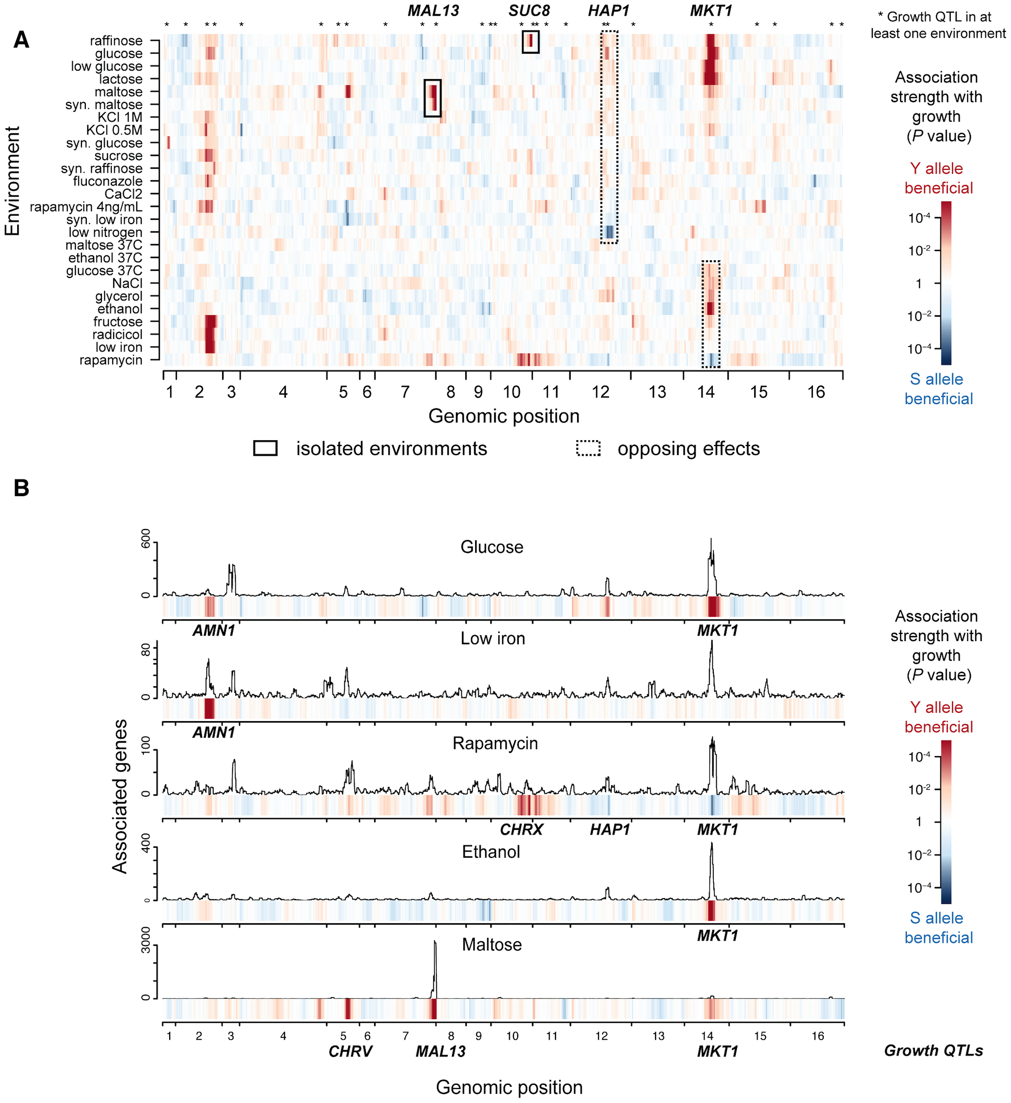 Genetic architecture of growth rate and gene expression in multiple environments.