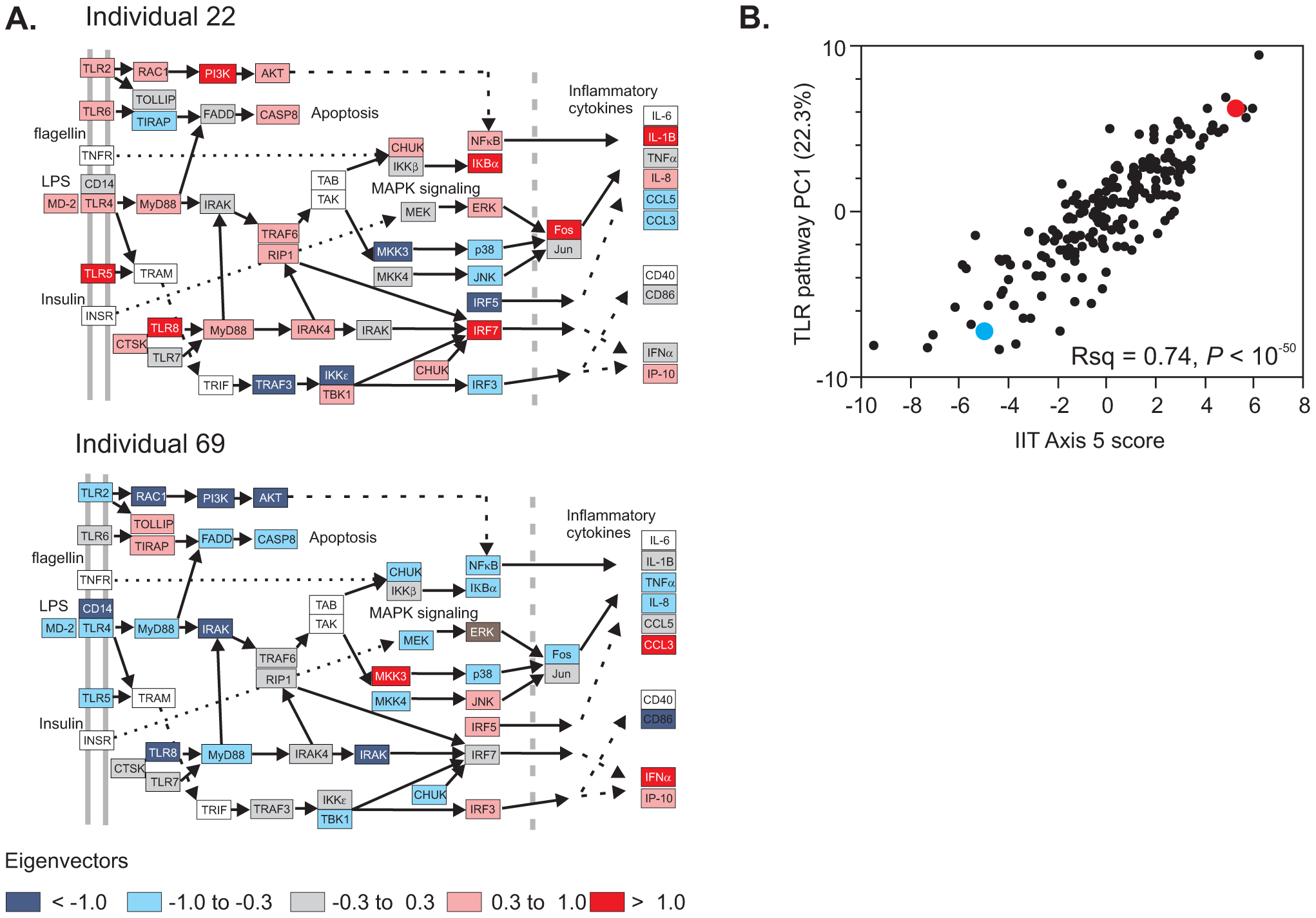 Pathway analysis of transcript abundance.