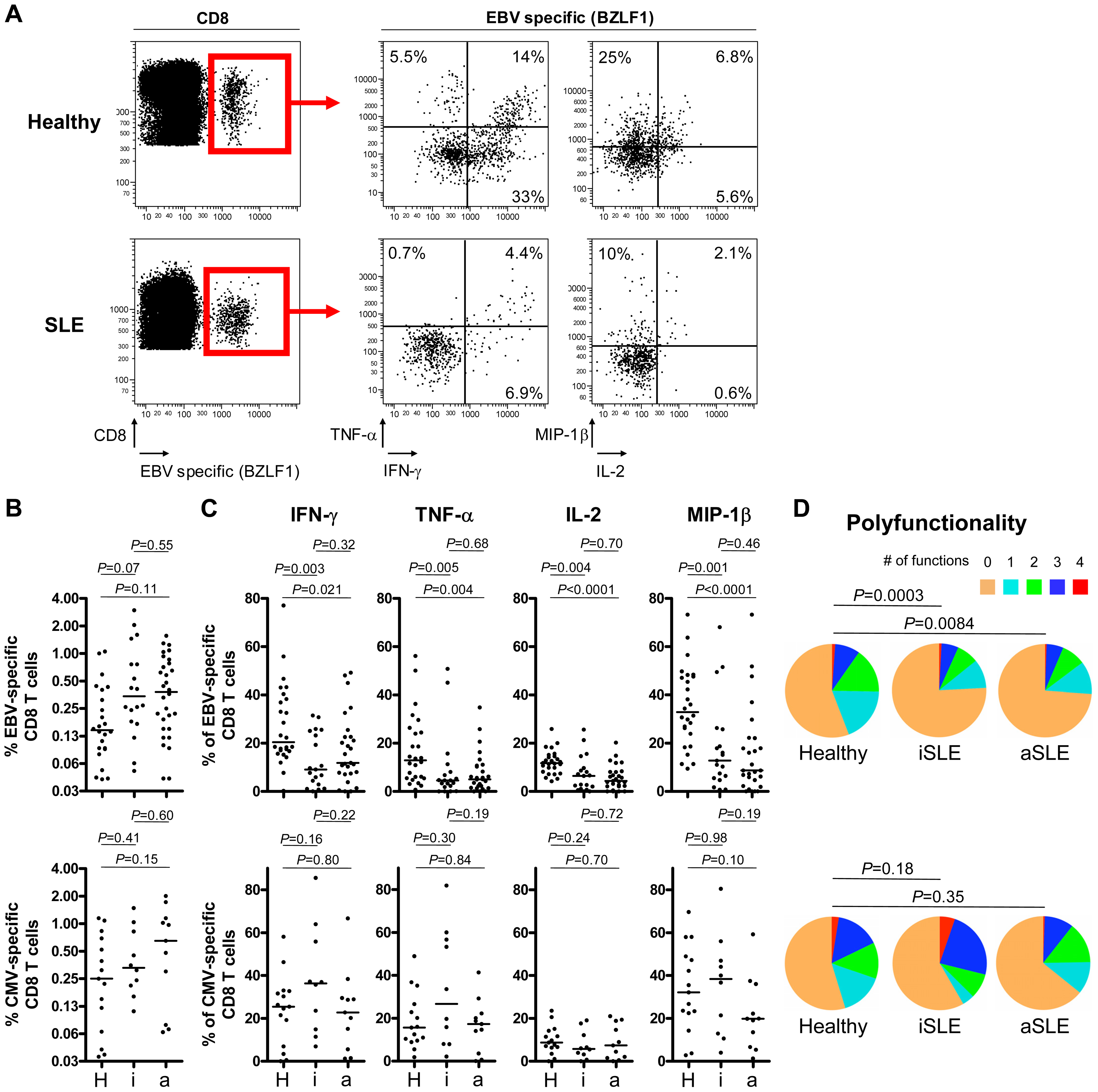 Multiparametric functional assessment of EBV- and CMV-specific CD8<sup>+</sup> T cells in SLE patients.