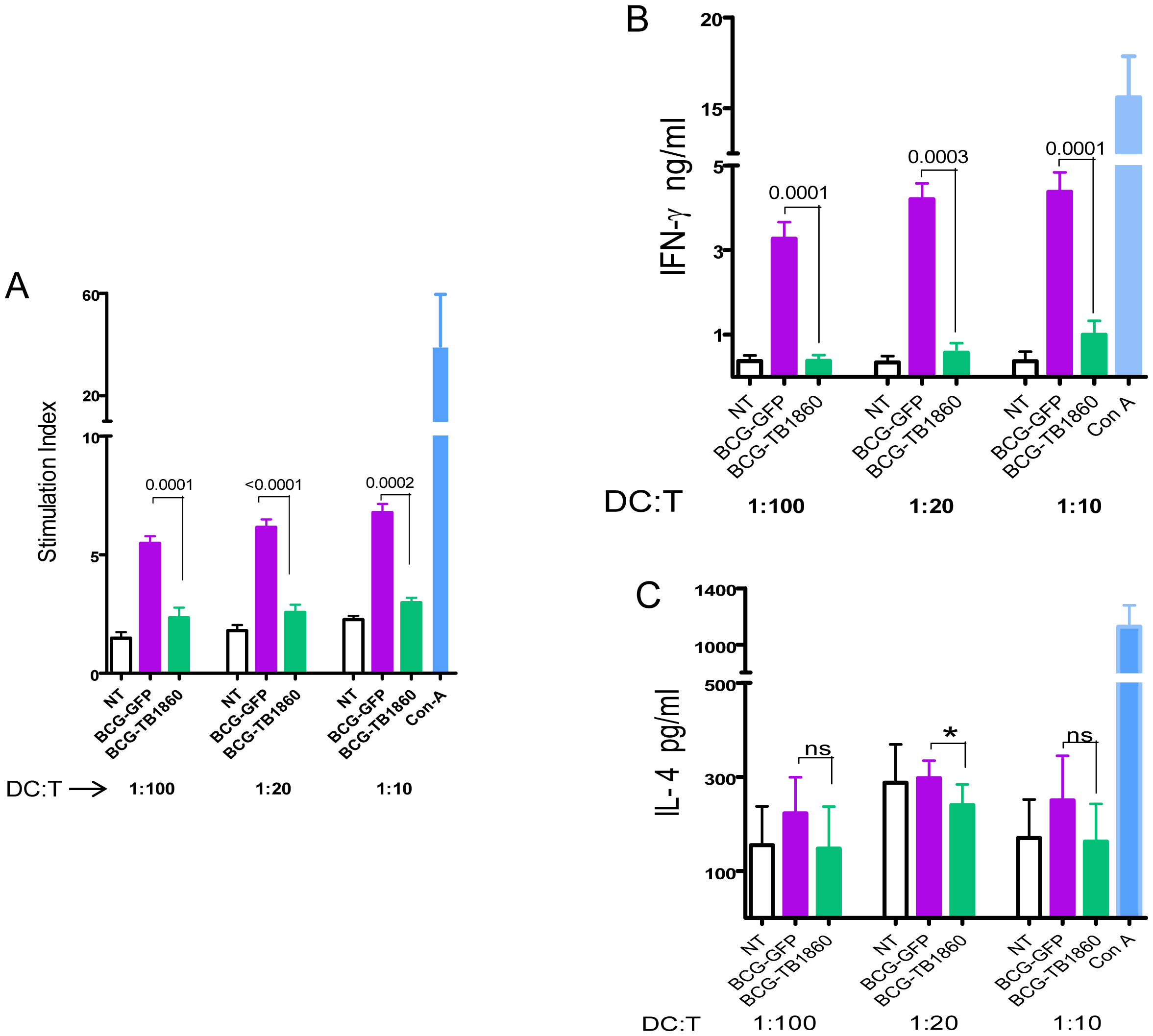 Polarization of allogeneic splenocytes by BCG-infected BMDC.