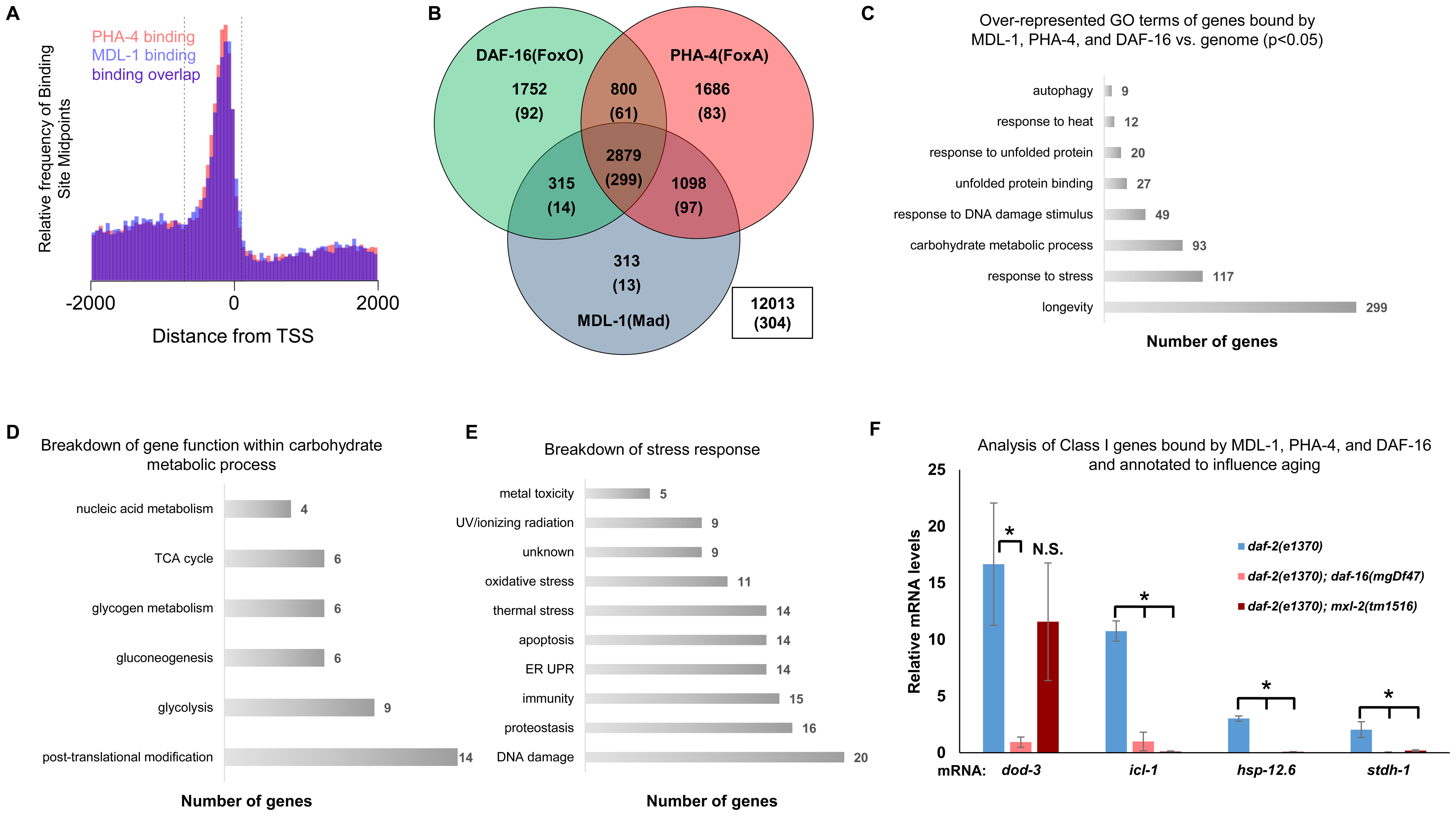 ChIP-seq data shows significant overlap amongst MDL-1, DAF-16, and PHA-4 promoter binding.