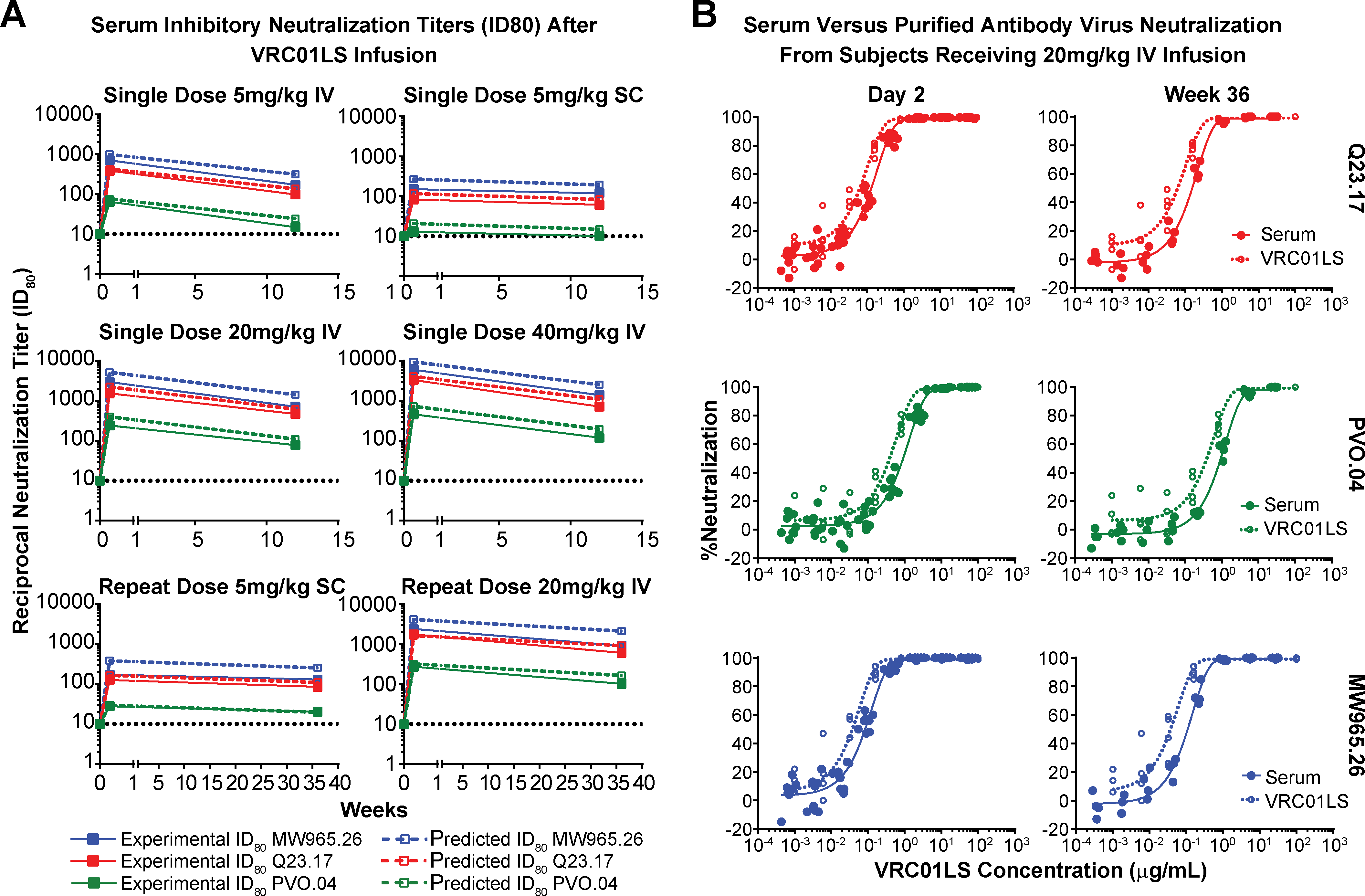 Neutralizing ability of VRC01LS is maintained in serum after infusion.